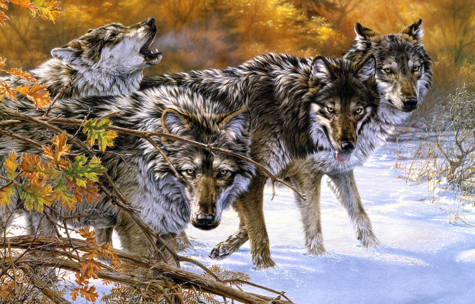 27039 download wallpaper Animals, Wolfs, Snow, Pictures screensavers and pictures for free
