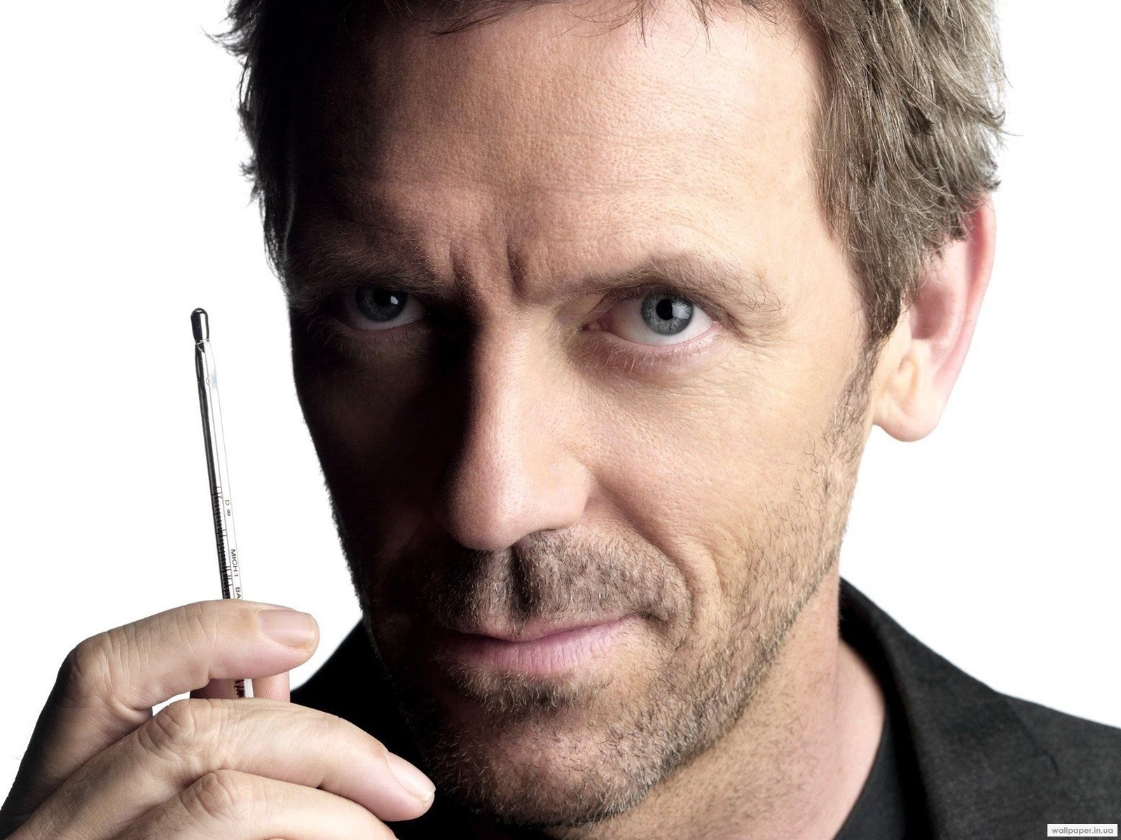 1502 download wallpaper Cinema, Actors, Men, House M.d., Hugh Laurie screensavers and pictures for free