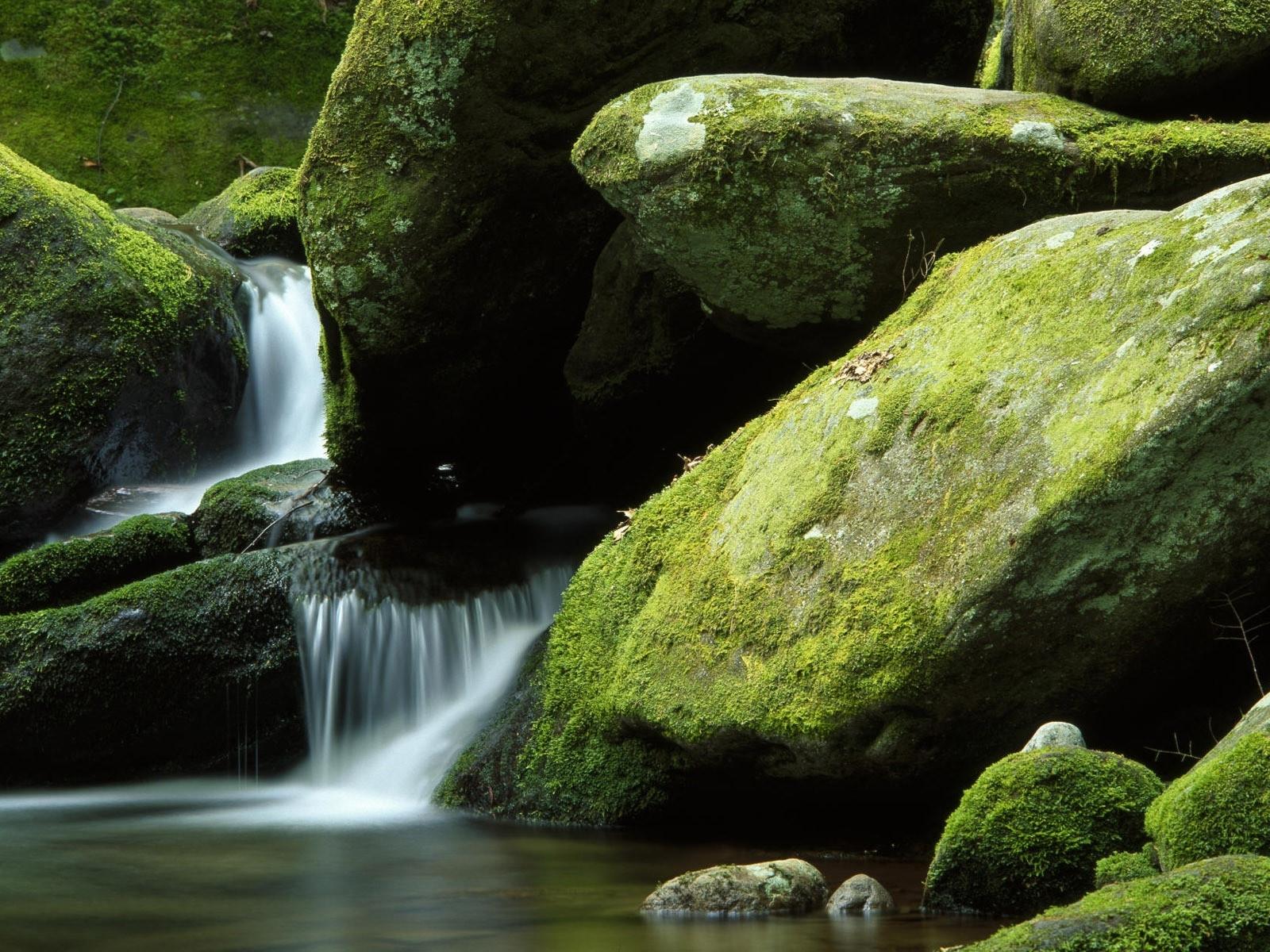 3225 скачать обои Пейзаж, Вода, Река, Камни - заставки и картинки бесплатно