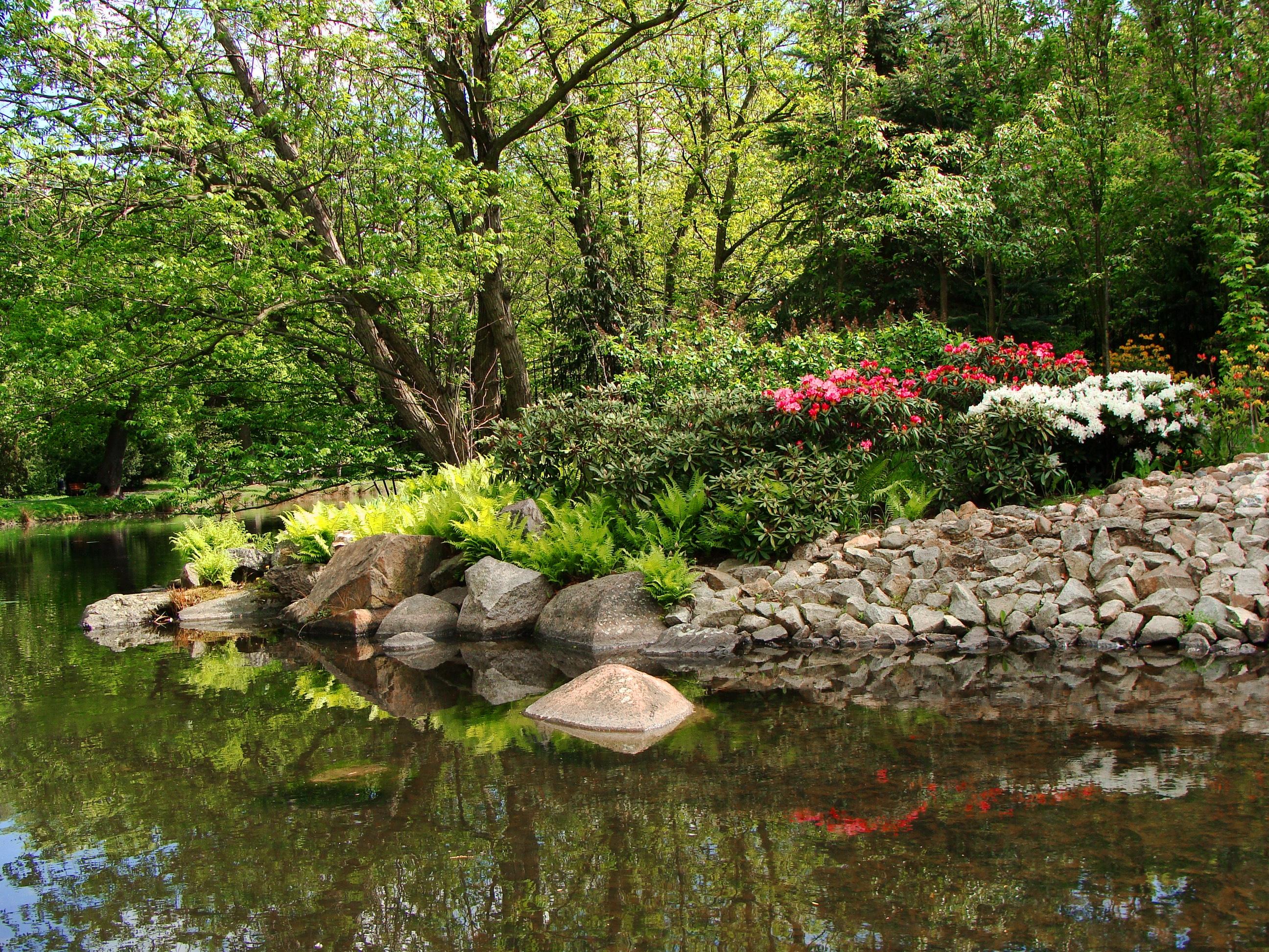 96461 скачать обои Природа, Парк, Пруд, Деревья, Камни, Пейзаж - заставки и картинки бесплатно