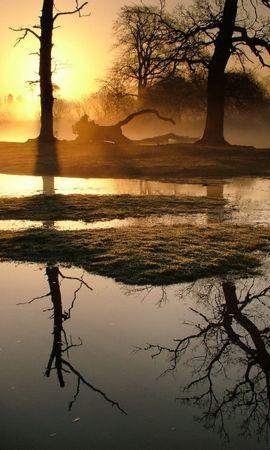 7454 скачать обои Пейзаж, Природа, Река, Деревья, Закат - заставки и картинки бесплатно