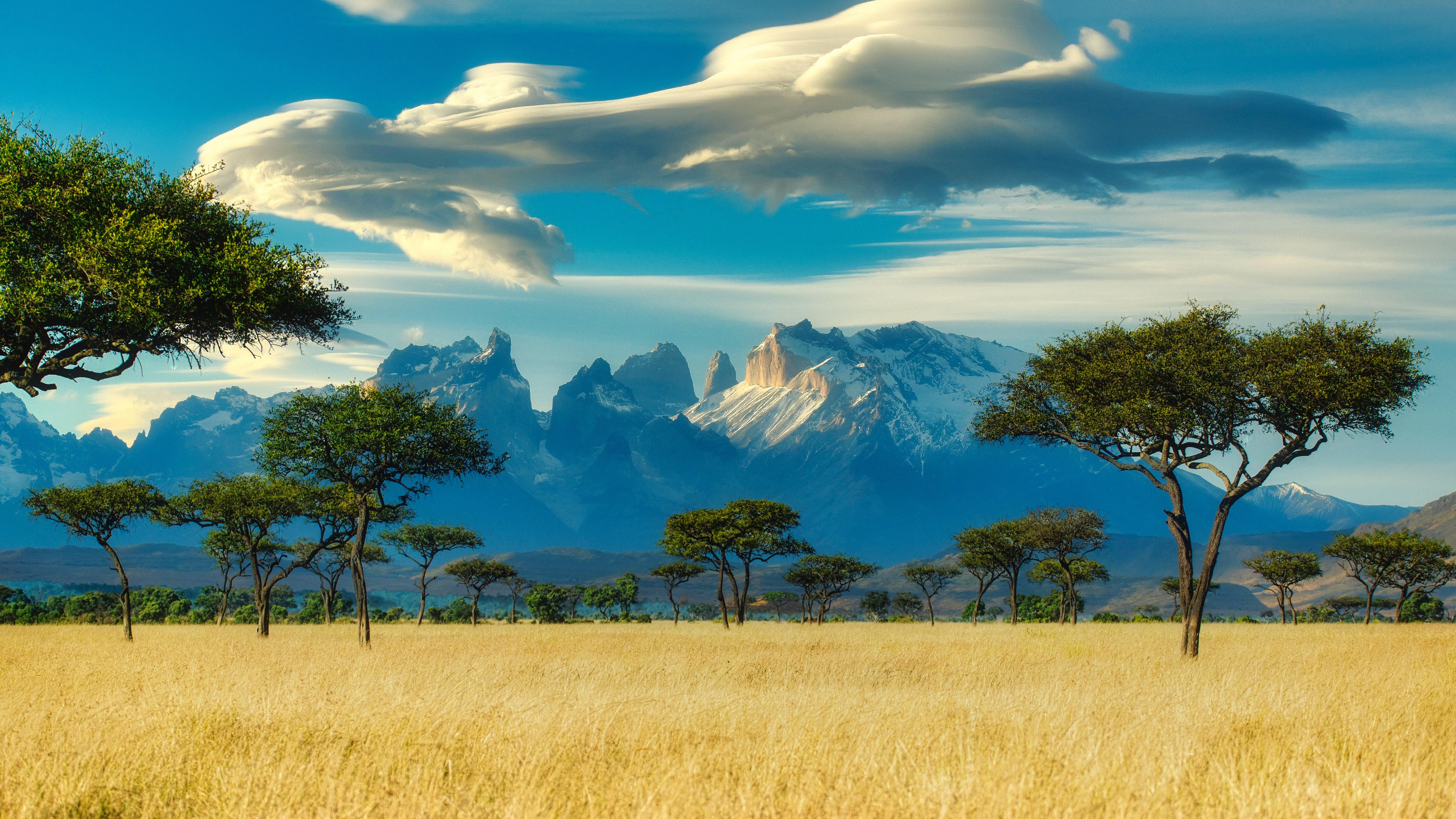 69207 Protetores de tela e papéis de parede Montanhas em seu telefone. Baixe Montanhas, Paisagem, Natureza, Árvores, Savana, Campo fotos gratuitamente