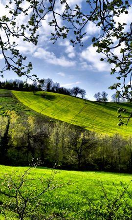 132729 Заставки и Обои Поля на телефон. Скачать Природа, Весна, Поля, Деревья, Зелень картинки бесплатно