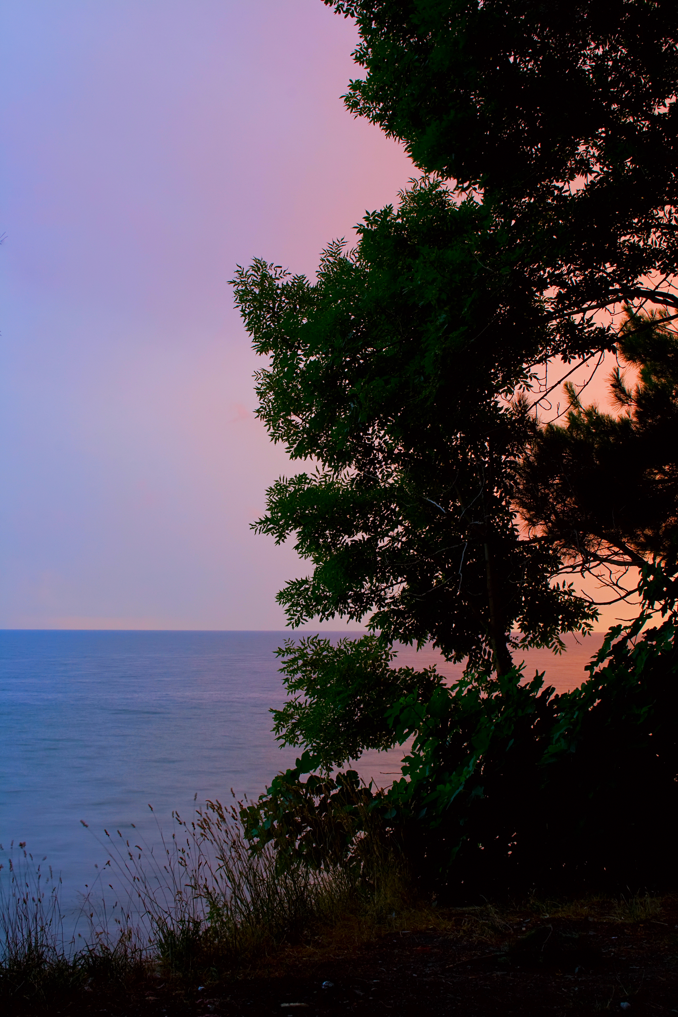 136512 download wallpaper Horizon, Landscape, Nature, Water, Trees, Shore, Bank screensavers and pictures for free