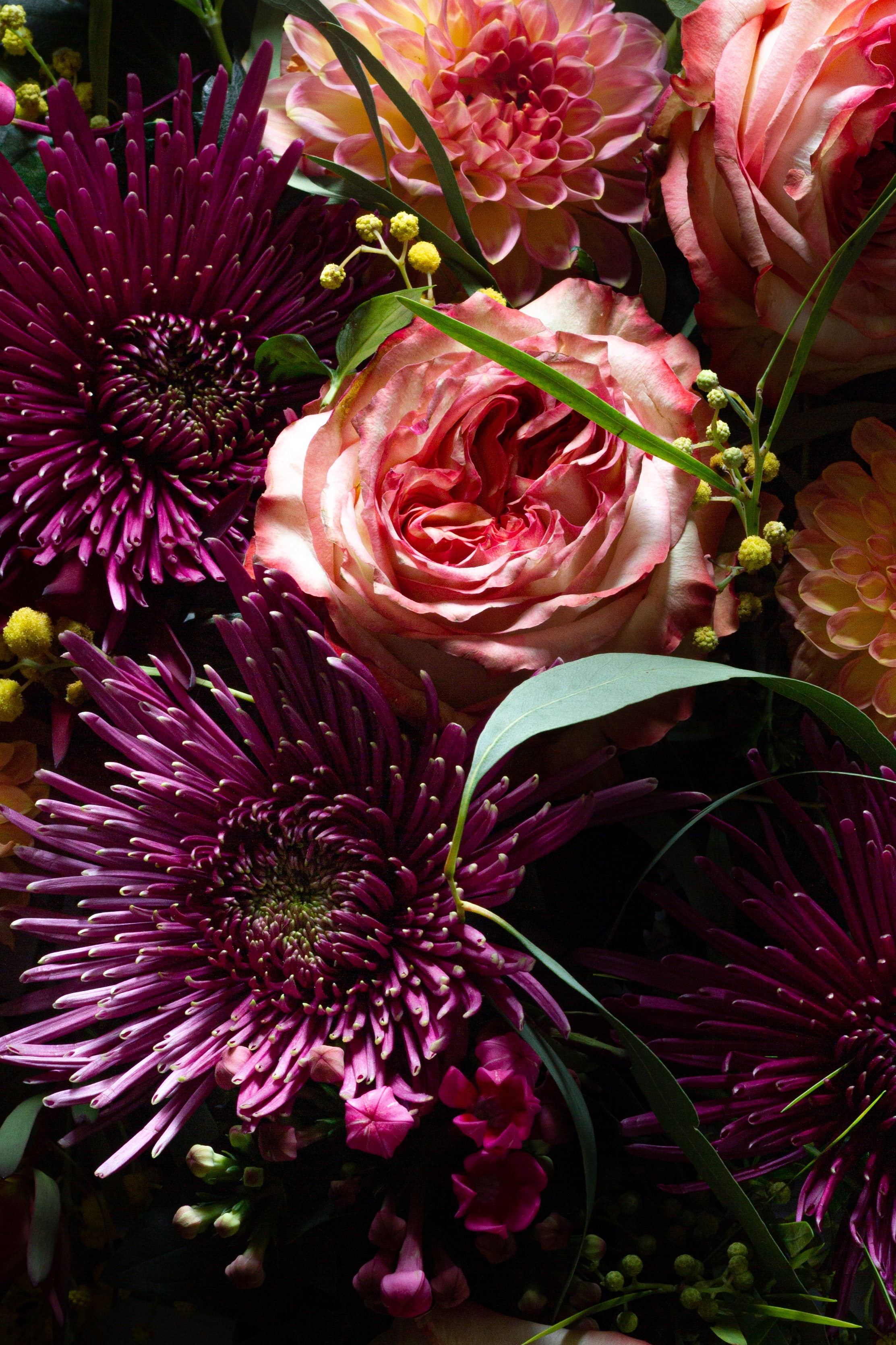 129579 скачать обои Цветы, Букет, Астры, Розы - заставки и картинки бесплатно