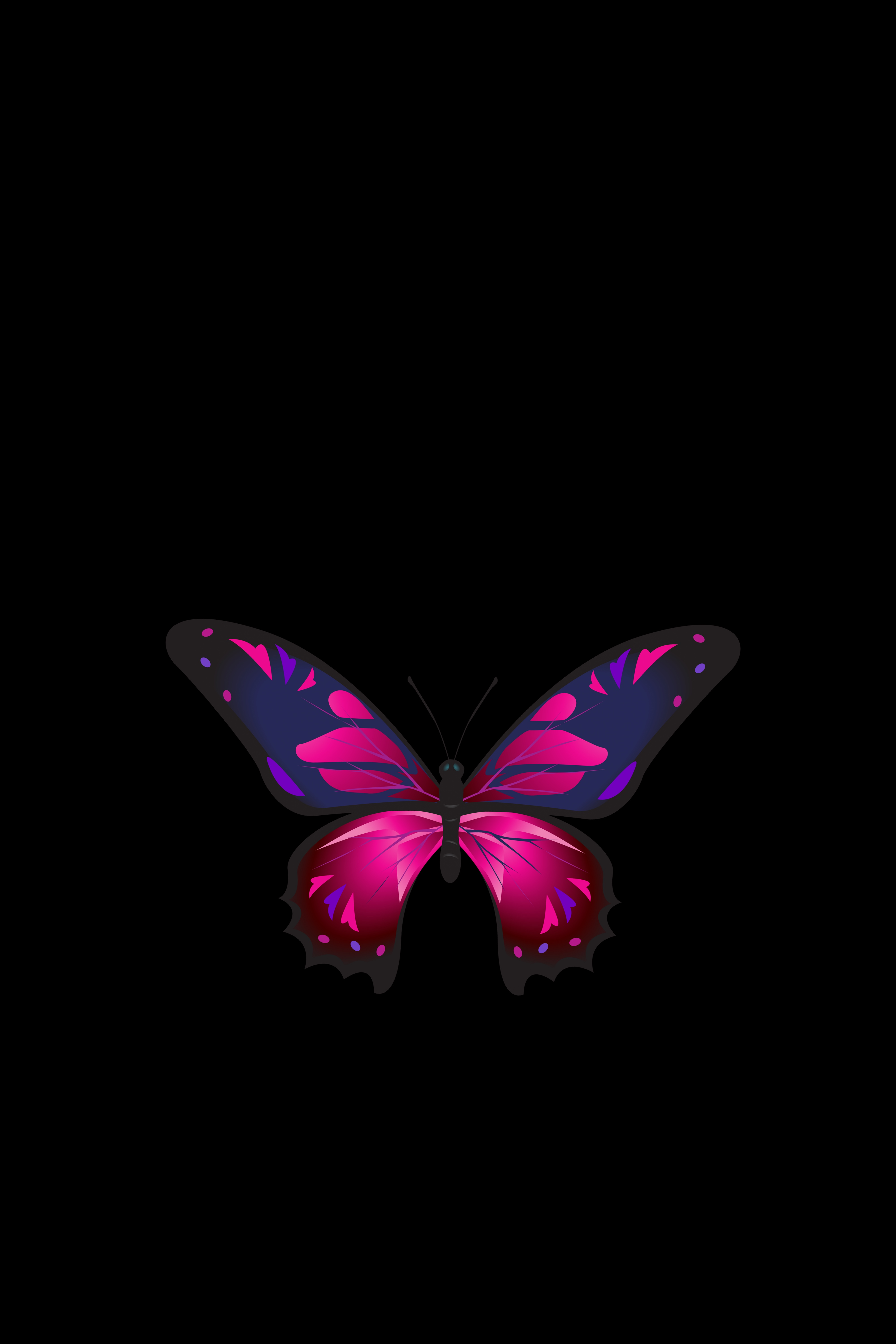 131801 download wallpaper Patterns, Dark, Dark Background, Butterfly, Wings screensavers and pictures for free