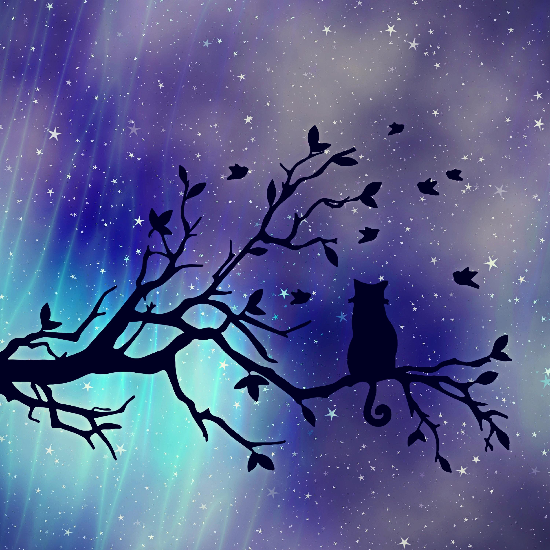 153293 скачать обои Ветка, Арт, Силуэт, Кот, Звездное Небо - заставки и картинки бесплатно