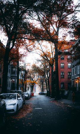 155713 скачать обои Улица, Город, Осень, Автомобили, Деревья, Города - заставки и картинки бесплатно