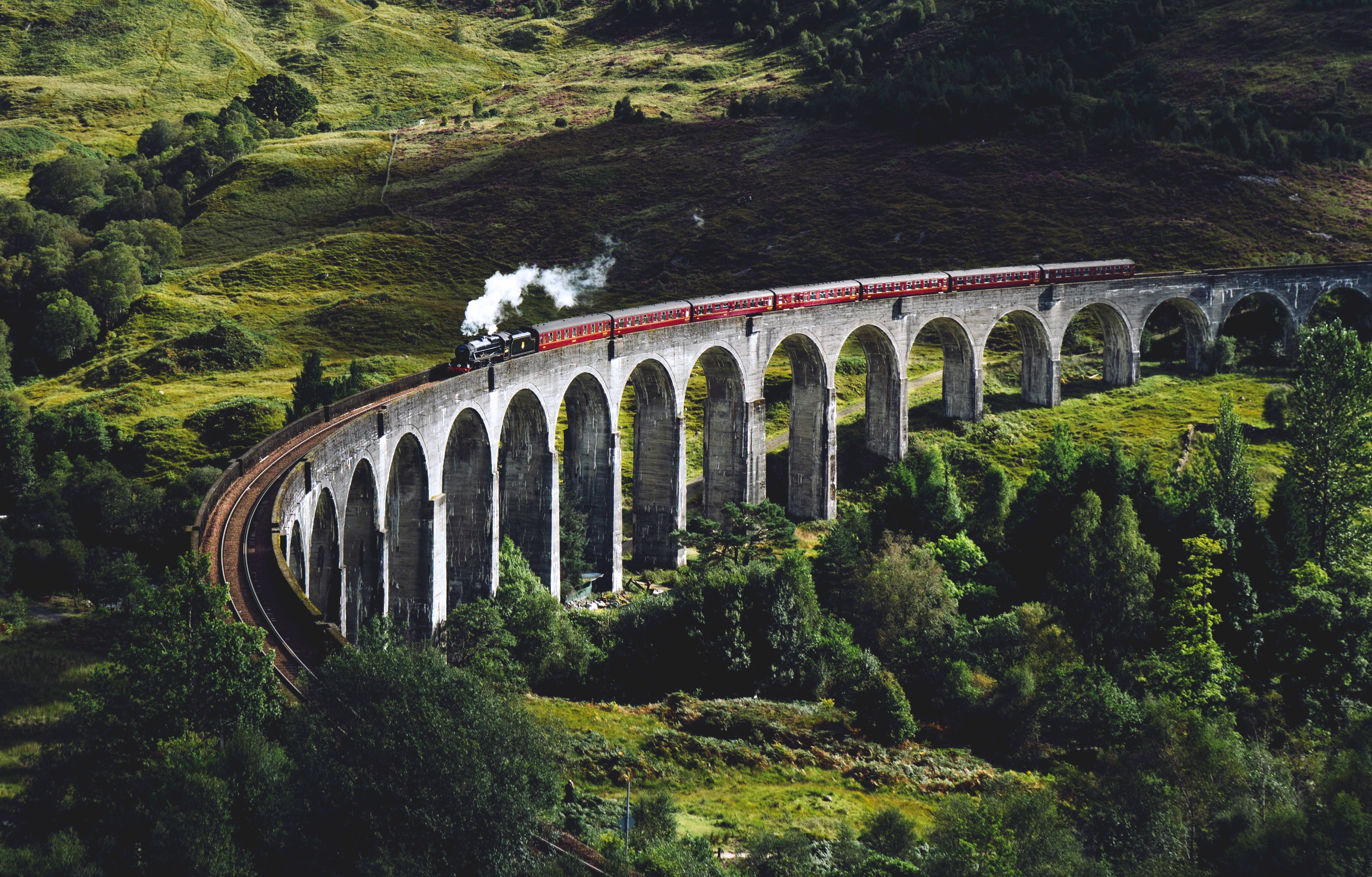 104818 Screensavers and Wallpapers Train for phone. Download Nature, Trees, Bridge, Train pictures for free