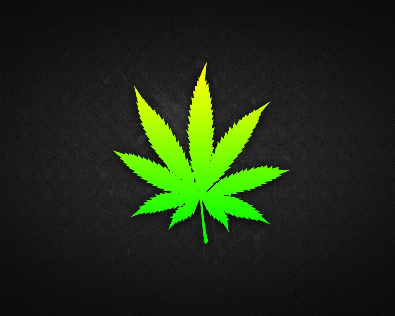 16062 Hintergrundbild herunterladen Pflanzen, Logos, Marijuana - Bildschirmschoner und Bilder kostenlos