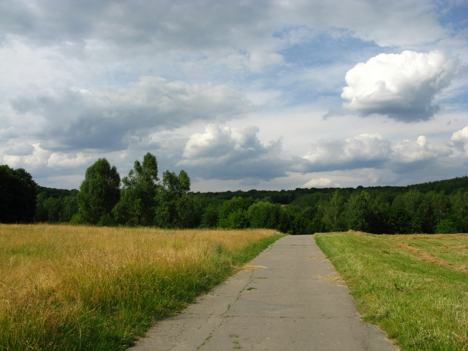 1828 download wallpaper Landscape, Grass, Sky, Roads screensavers and pictures for free