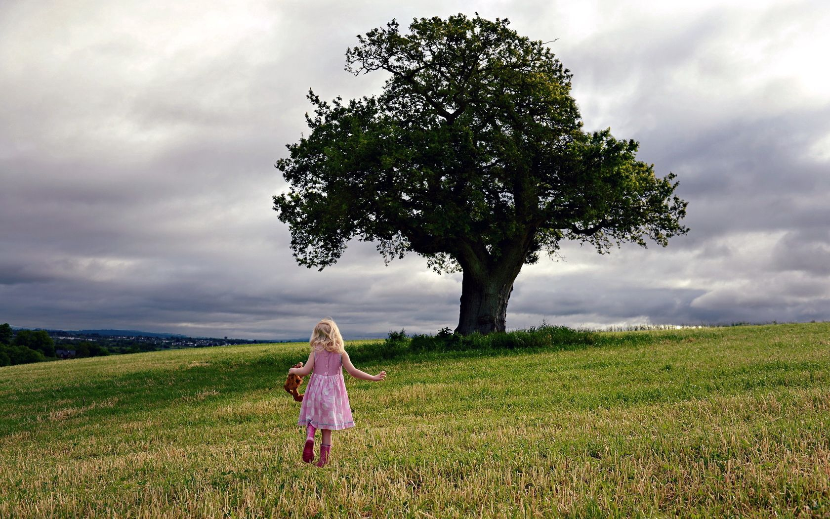 71976 скачать обои Разное, Девочка, Поле, Дерево, Настроение - заставки и картинки бесплатно