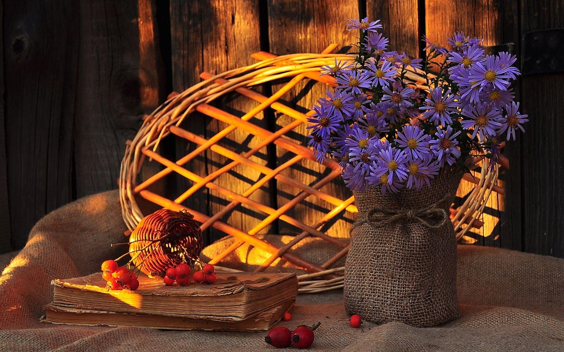 30497 скачать обои Растения, Цветы, Букеты - заставки и картинки бесплатно