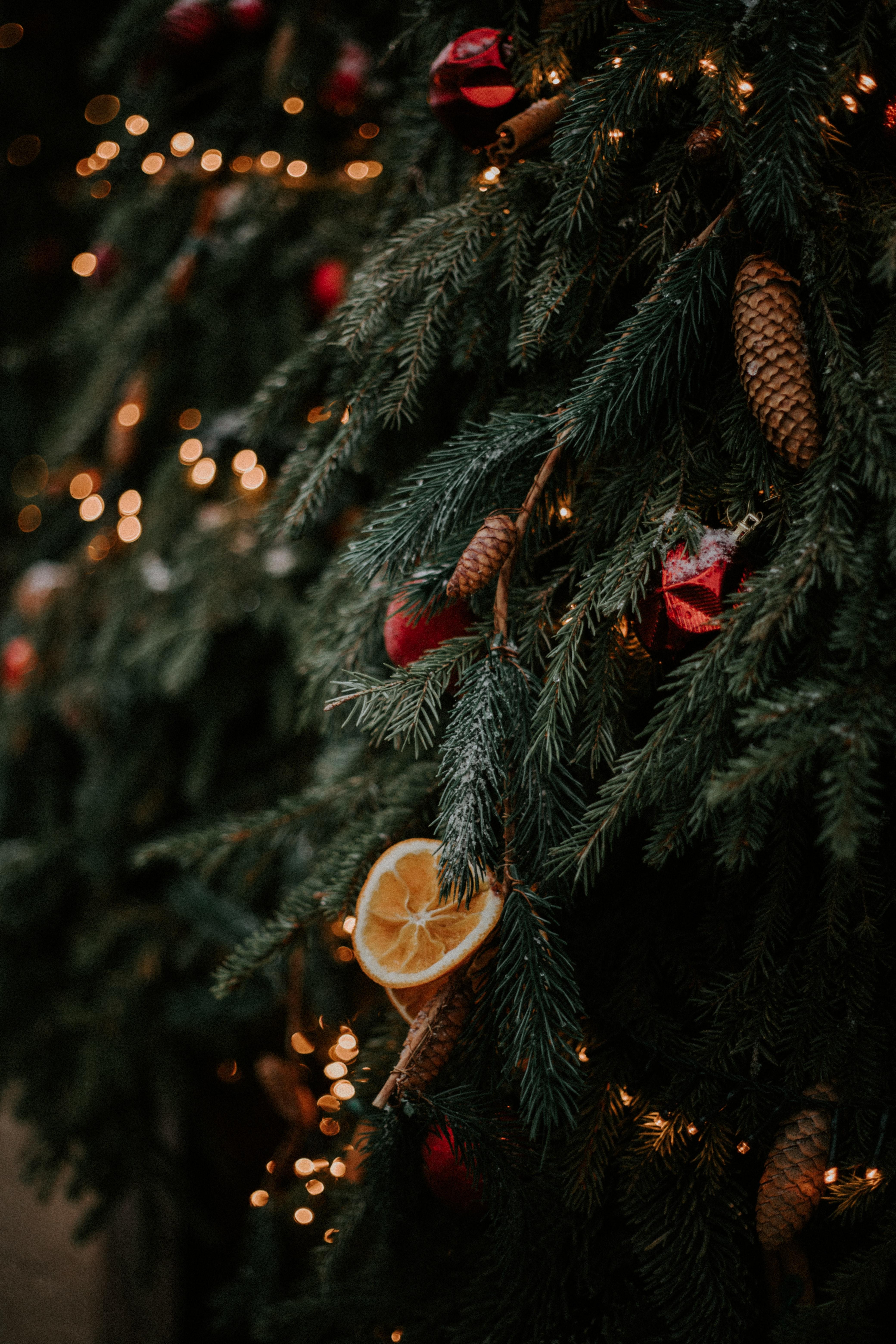 89845 скачать обои Праздники, Елка, Шишки, Апельсин, Украшения, Гирлянды, Новый Год, Рождество - заставки и картинки бесплатно