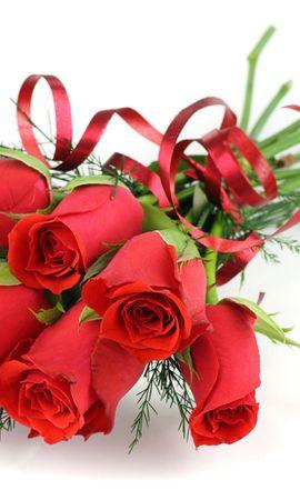 5563 скачать обои Праздники, Растения, Цветы, Розы, 8 Марта - заставки и картинки бесплатно