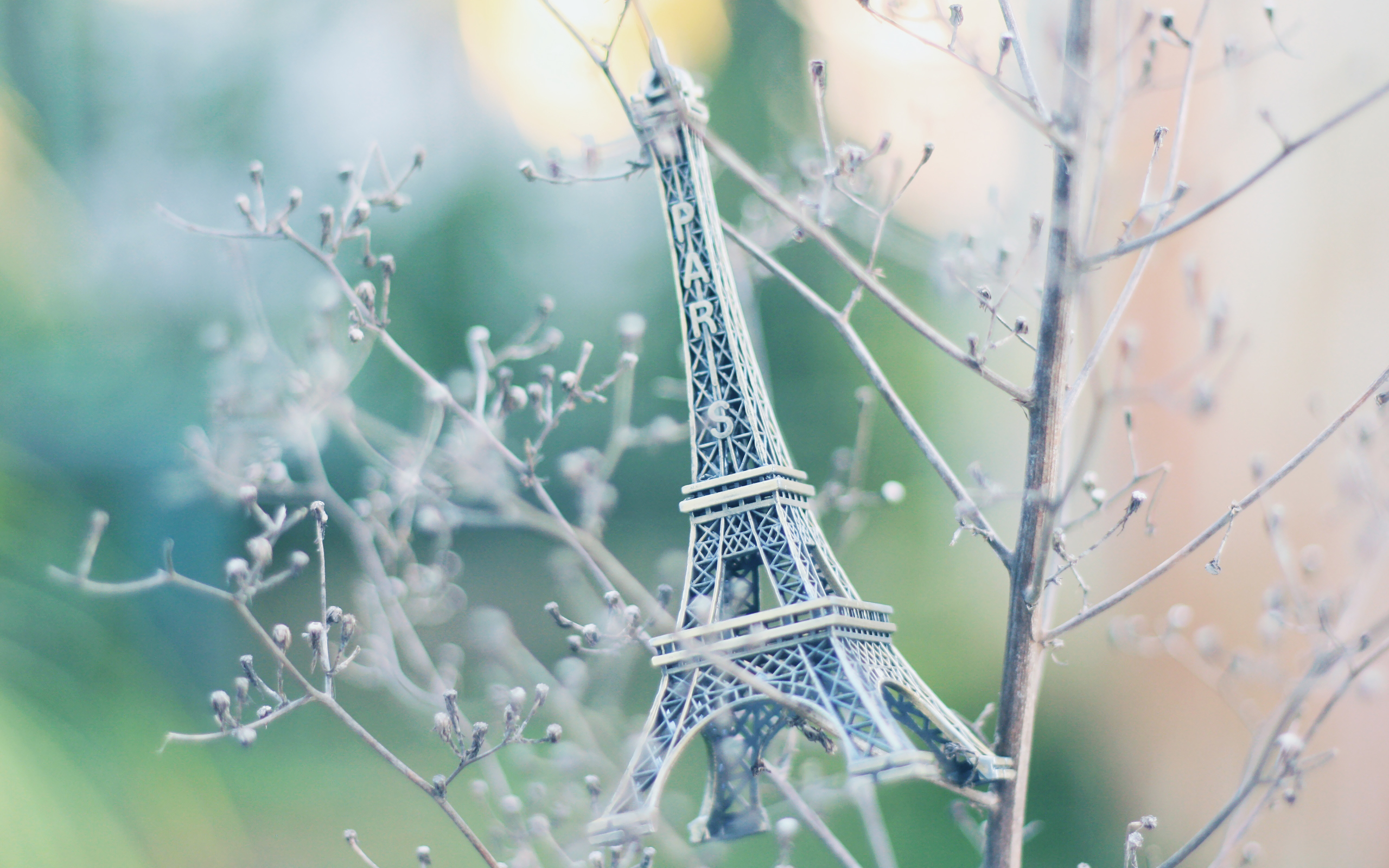 17585 download wallpaper Objects, Eiffel Tower, Jewelry screensavers and pictures for free