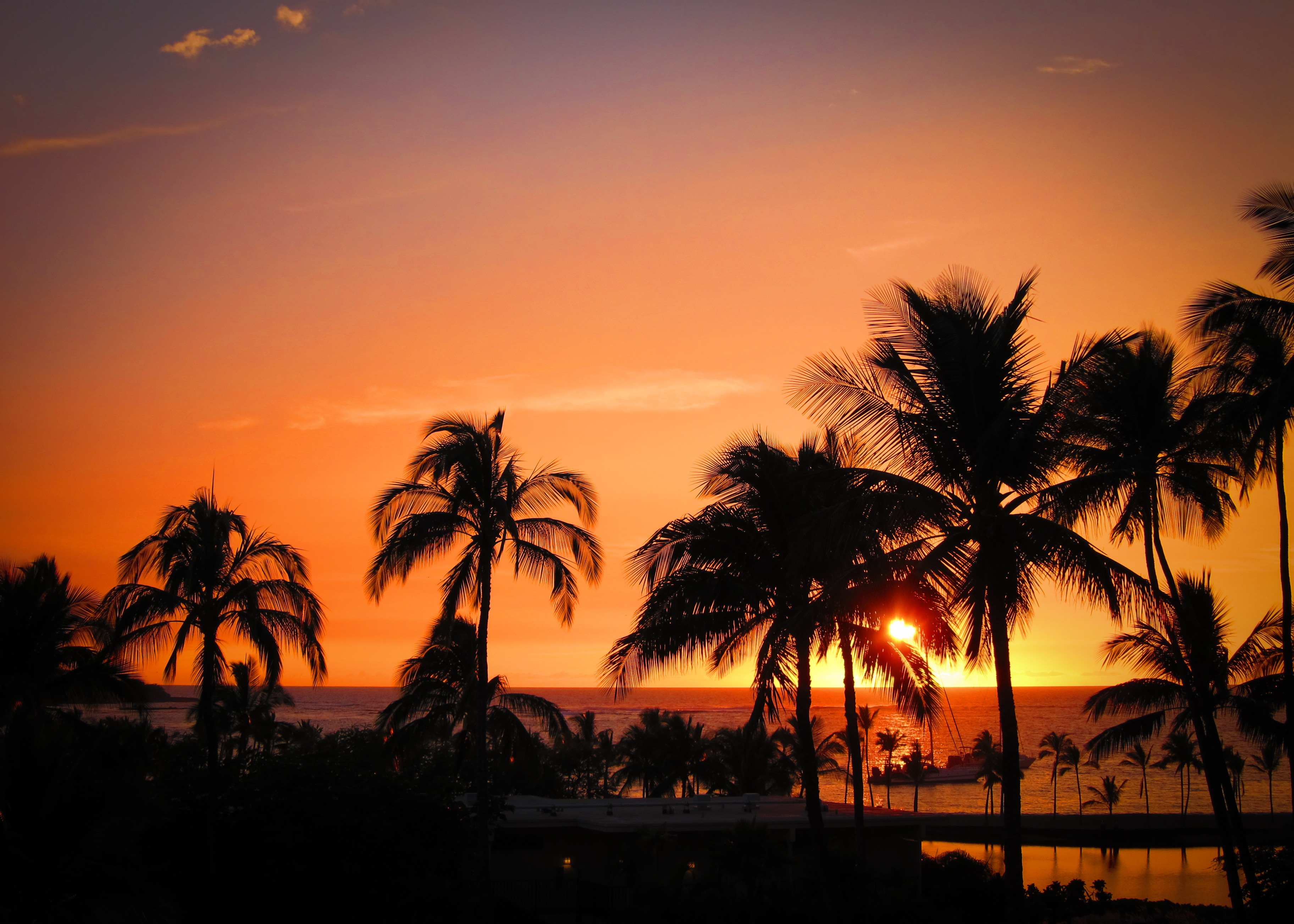 142586 download wallpaper Nature, Sunset, Hawaii, Tropics, Ocean, Horizon, Palms screensavers and pictures for free