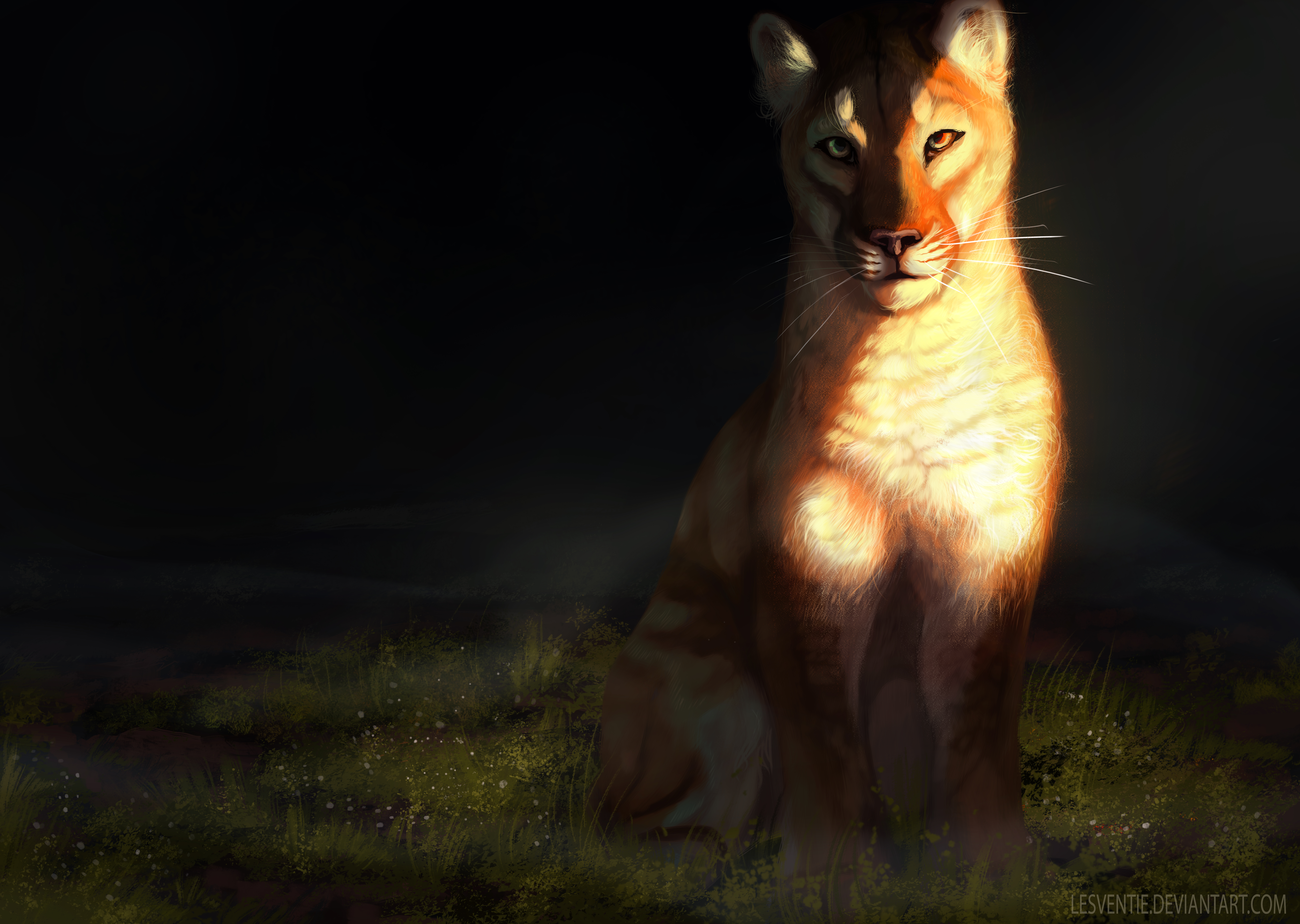 131334 download wallpaper Lioness, Big Cat, Sight, Opinion, Art screensavers and pictures for free