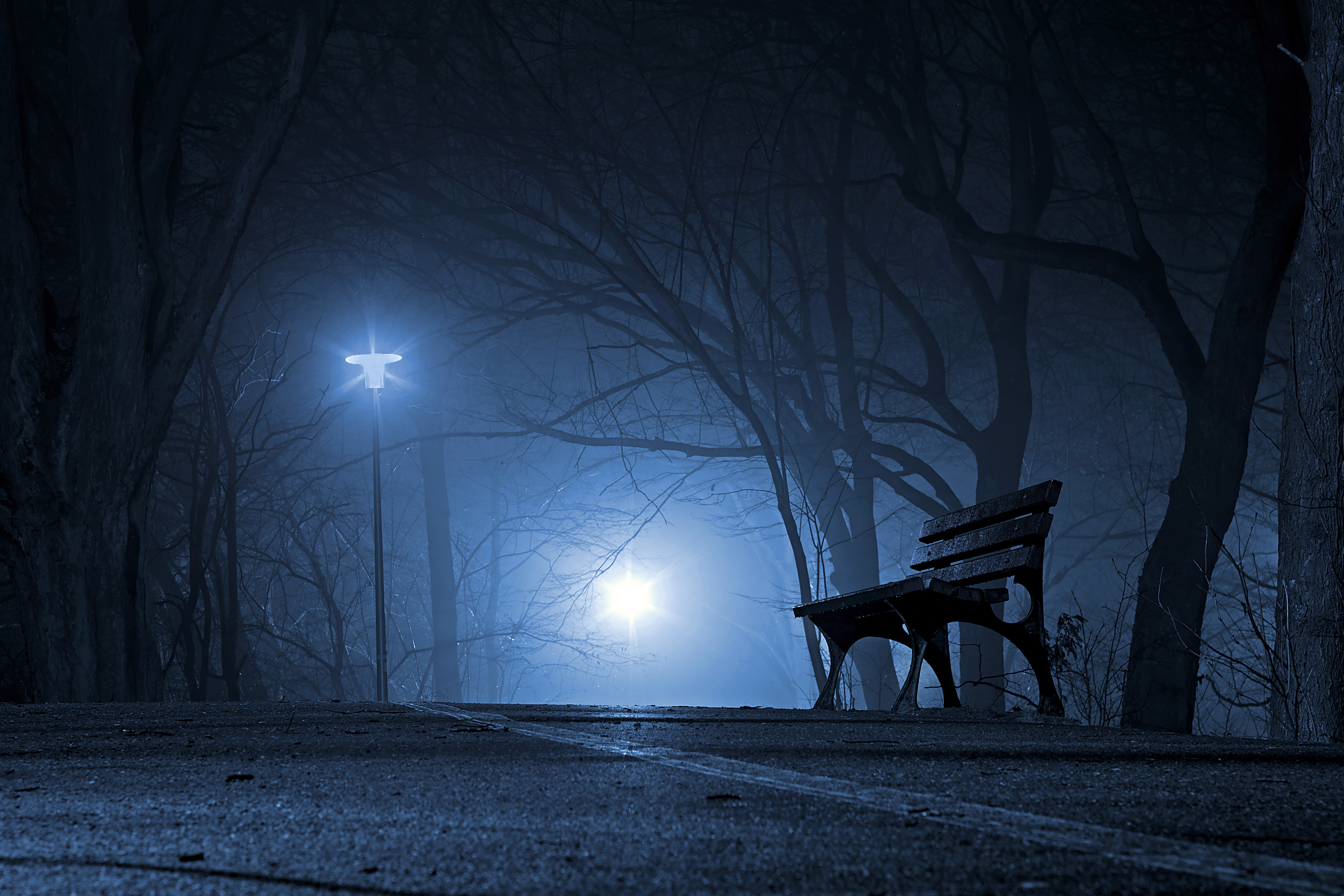 134296 Screensavers and Wallpapers Bench for phone. Download Nature, Night, Park, Bench, Gloomy, Gloomily pictures for free