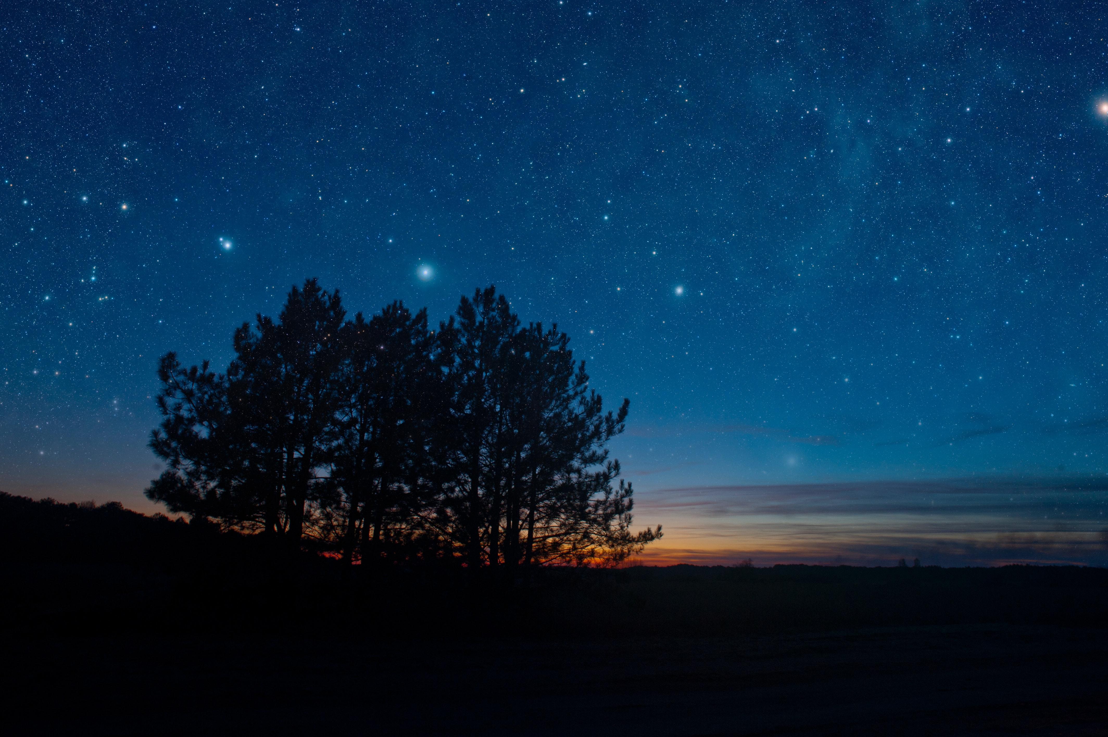 148691壁紙のダウンロード闇, 暗い, 星空, ナイト, 木, スター, 風景-スクリーンセーバーと写真を無料で
