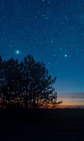 148691 скачать обои Темные, Звездное Небо, Ночь, Деревья, Звезды, Пейзаж - заставки и картинки бесплатно