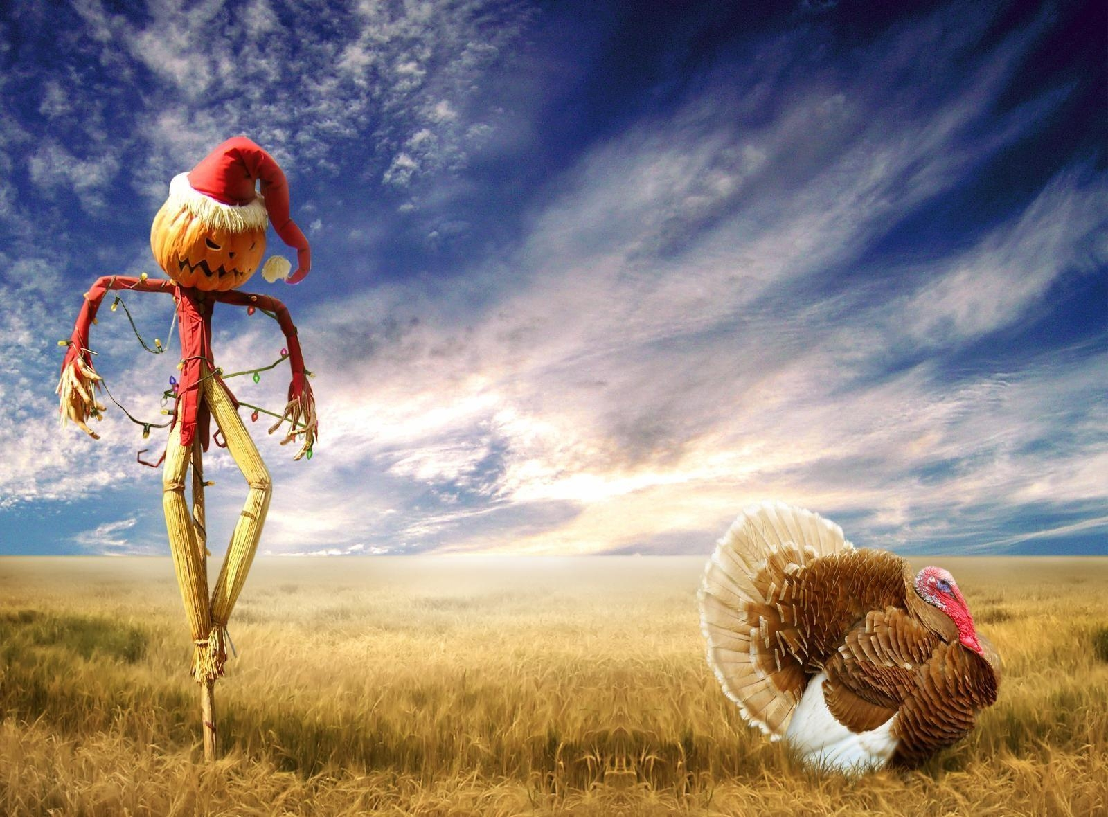 157697 download wallpaper Holidays, Sky, Halloween, Holiday, Field, Turkey, Scarecrow screensavers and pictures for free