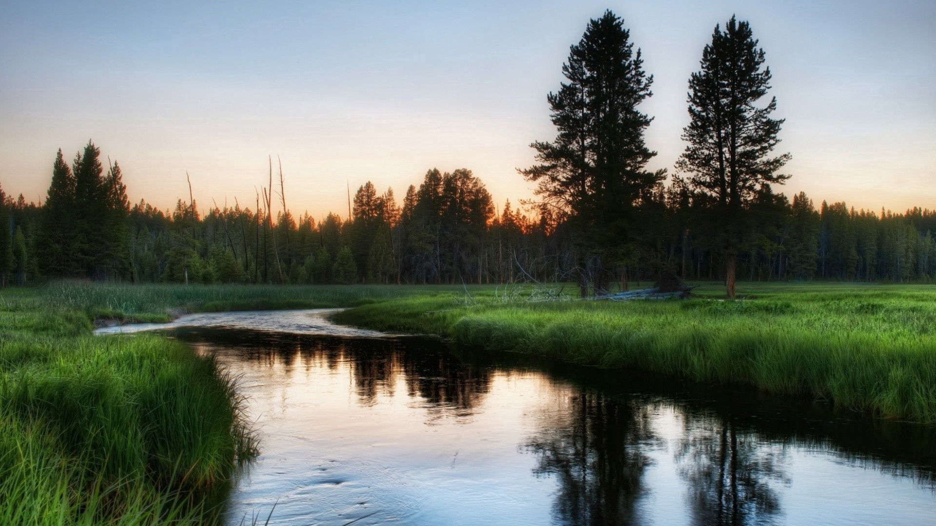 155359 скачать обои Деревья, Река, Природа, Трава, Вечер - заставки и картинки бесплатно