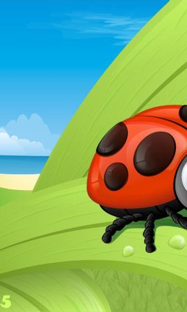 9763 download wallpaper Funny, Ladybugs, Pictures screensavers and pictures for free