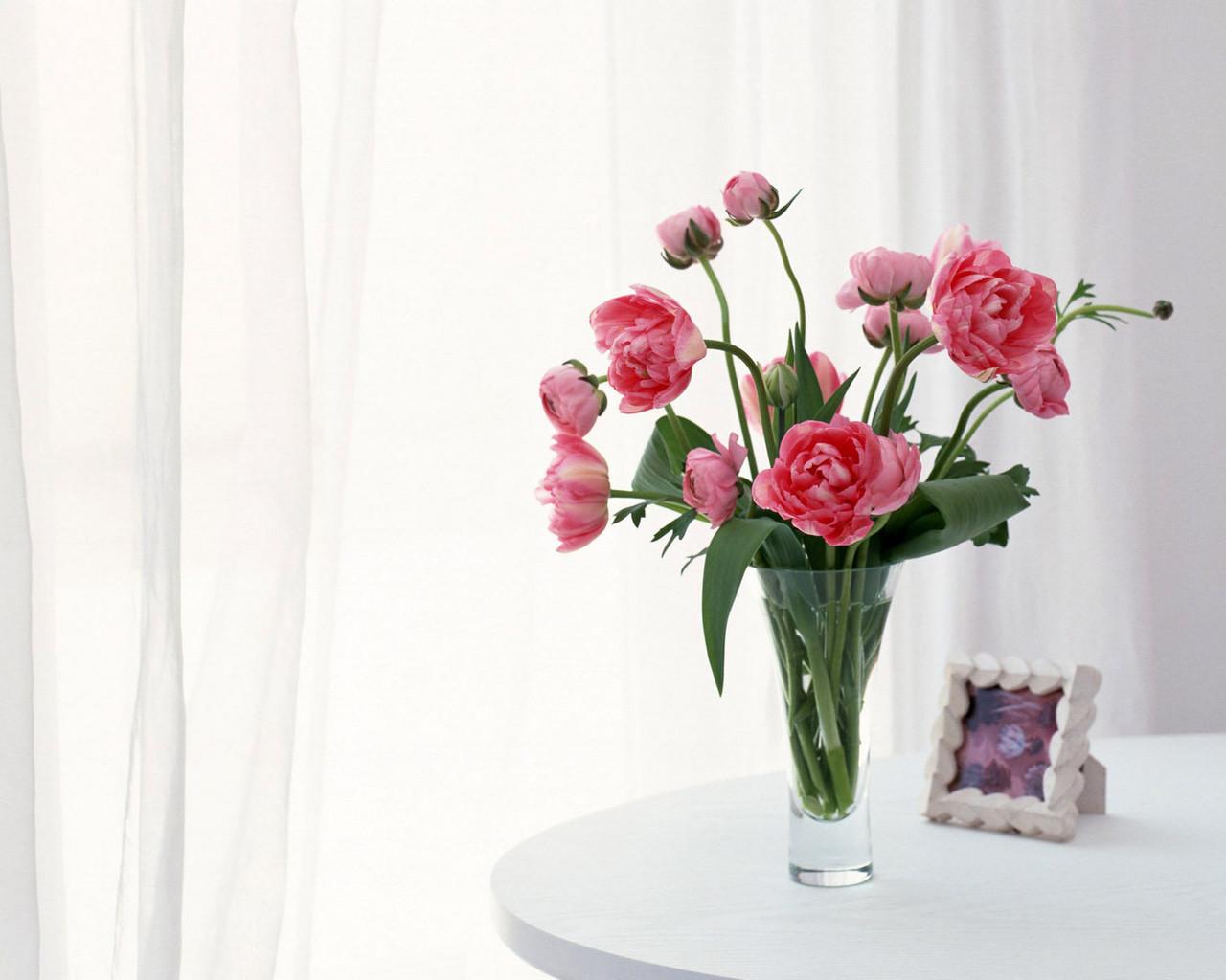 22168 скачать обои Пионы, Растения, Цветы, Букеты - заставки и картинки бесплатно