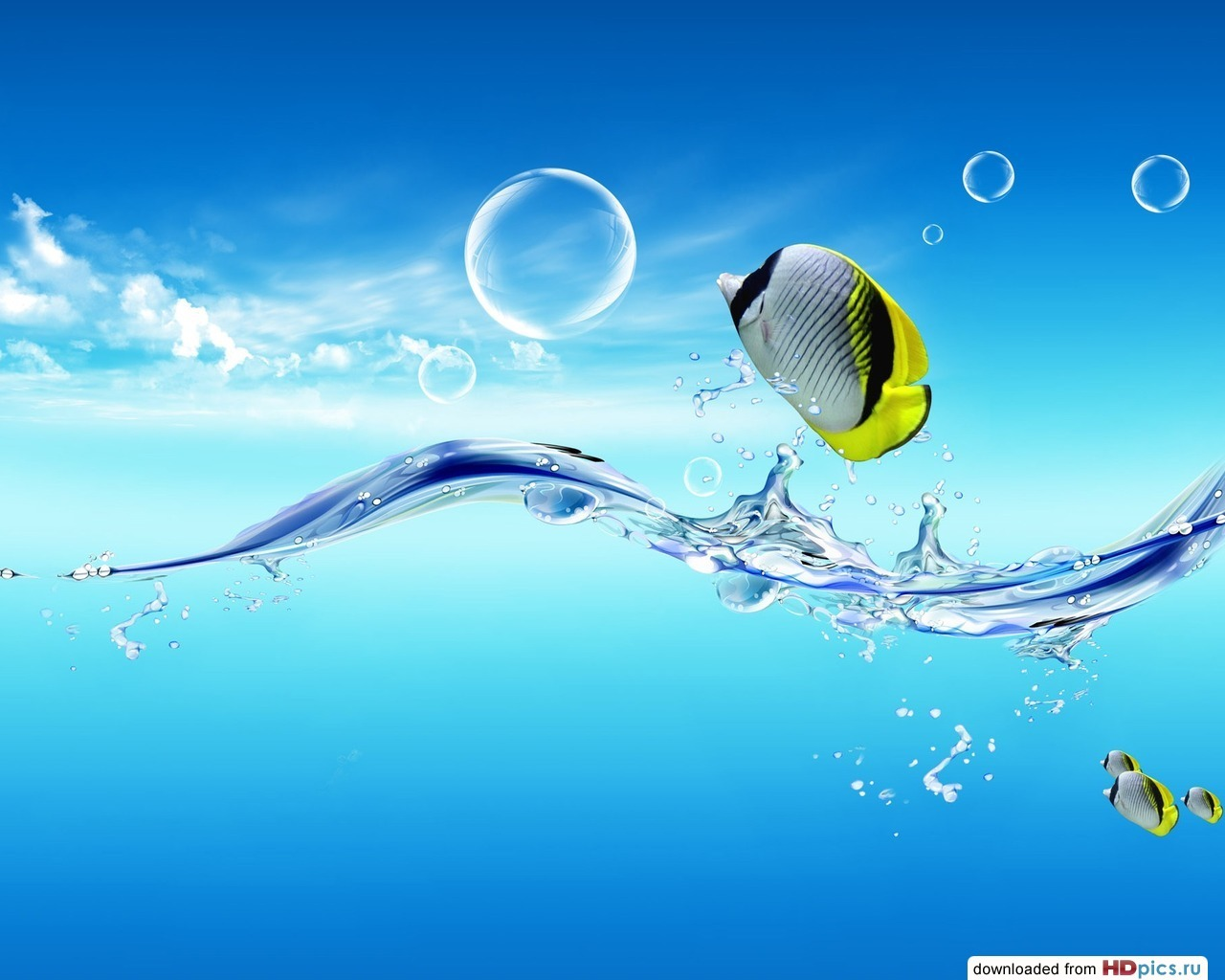 11456 download wallpaper Animals, Water, Art, Bubbles, Fishes screensavers and pictures for free