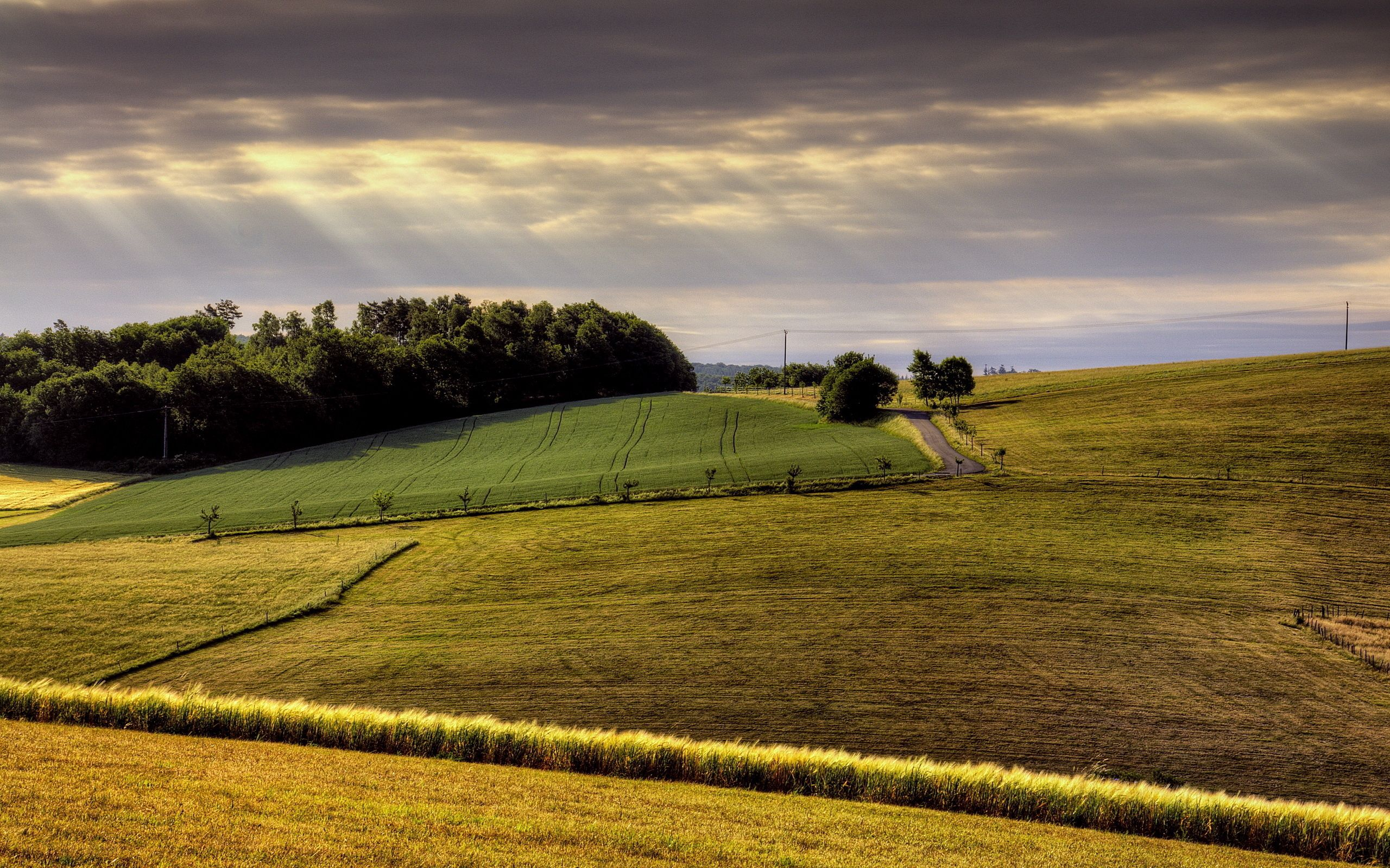113677 Screensavers and Wallpapers Agriculture for phone. Download Nature, Road, Field, Hills, Day, Agriculture, Arable Land pictures for free