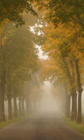 21950 скачать обои Пейзаж, Деревья, Дороги, Осень - заставки и картинки бесплатно