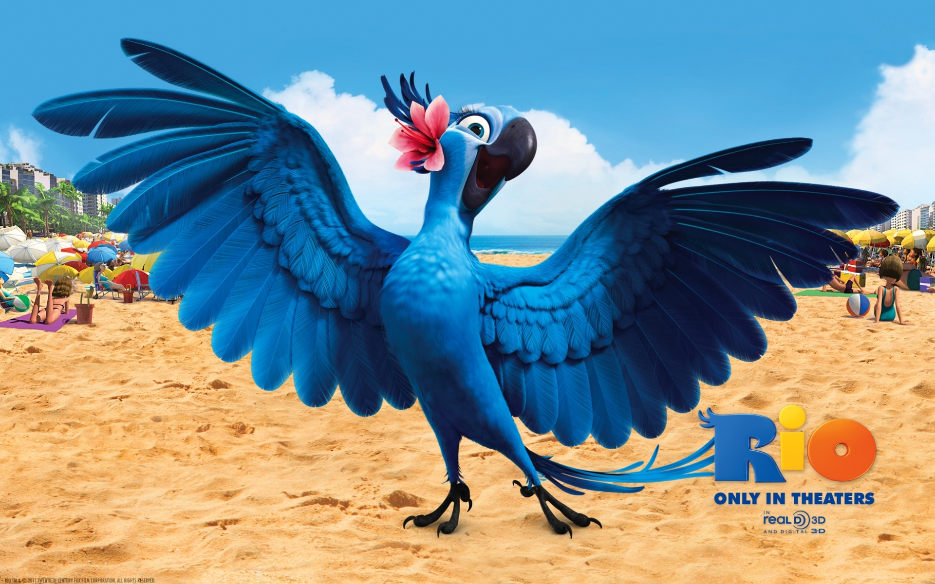 24969 скачать обои Мультфильмы, Птицы, Попугаи, Рио (Rio) - заставки и картинки бесплатно