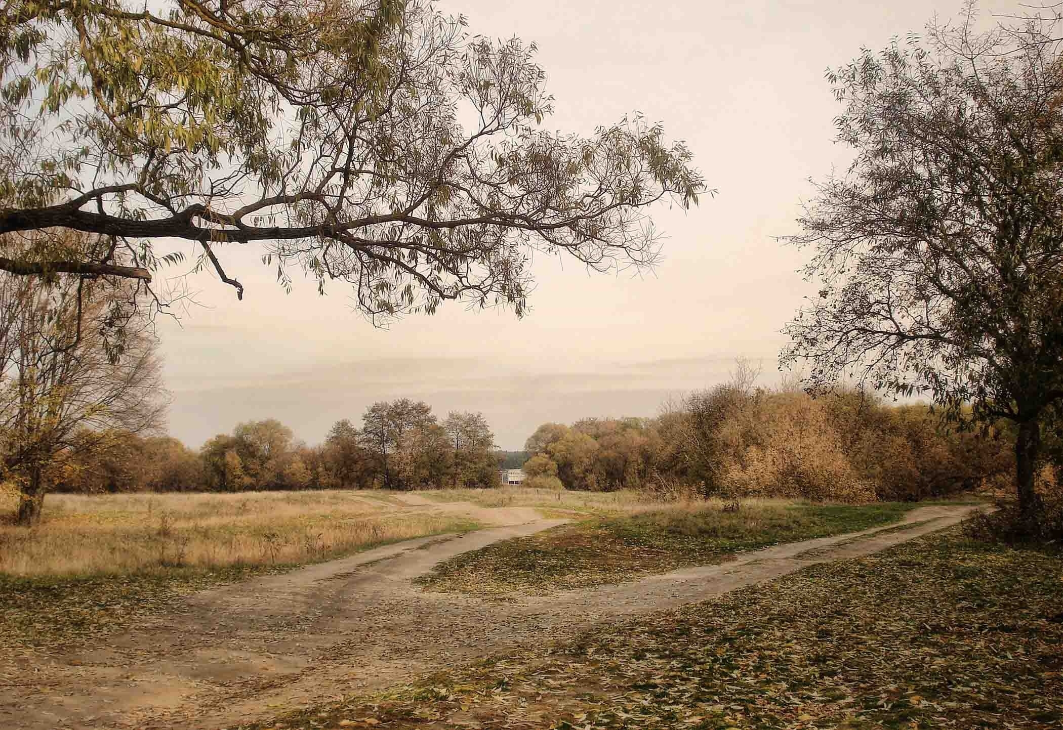 151061 free download Gray wallpapers for phone, Landscape, Nature, Roads, Autumn, Country, Countryside Gray images and screensavers for mobile