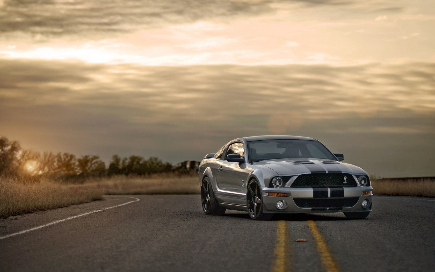 154328 download wallpaper Sunset, Ford, Mustang, Cars, Road, Silver, Silvery, Muscle Car, Shelby screensavers and pictures for free