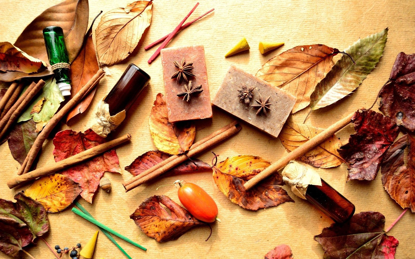 71373 download wallpaper Miscellanea, Miscellaneous, Vials, Bottles, Leaves, Barberry, Berries, Cinnamon screensavers and pictures for free