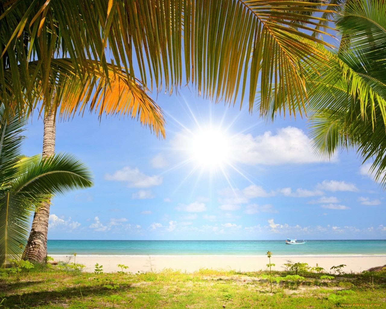 19923 download wallpaper Landscape, Sky, Sea, Clouds, Beach, Palms screensavers and pictures for free