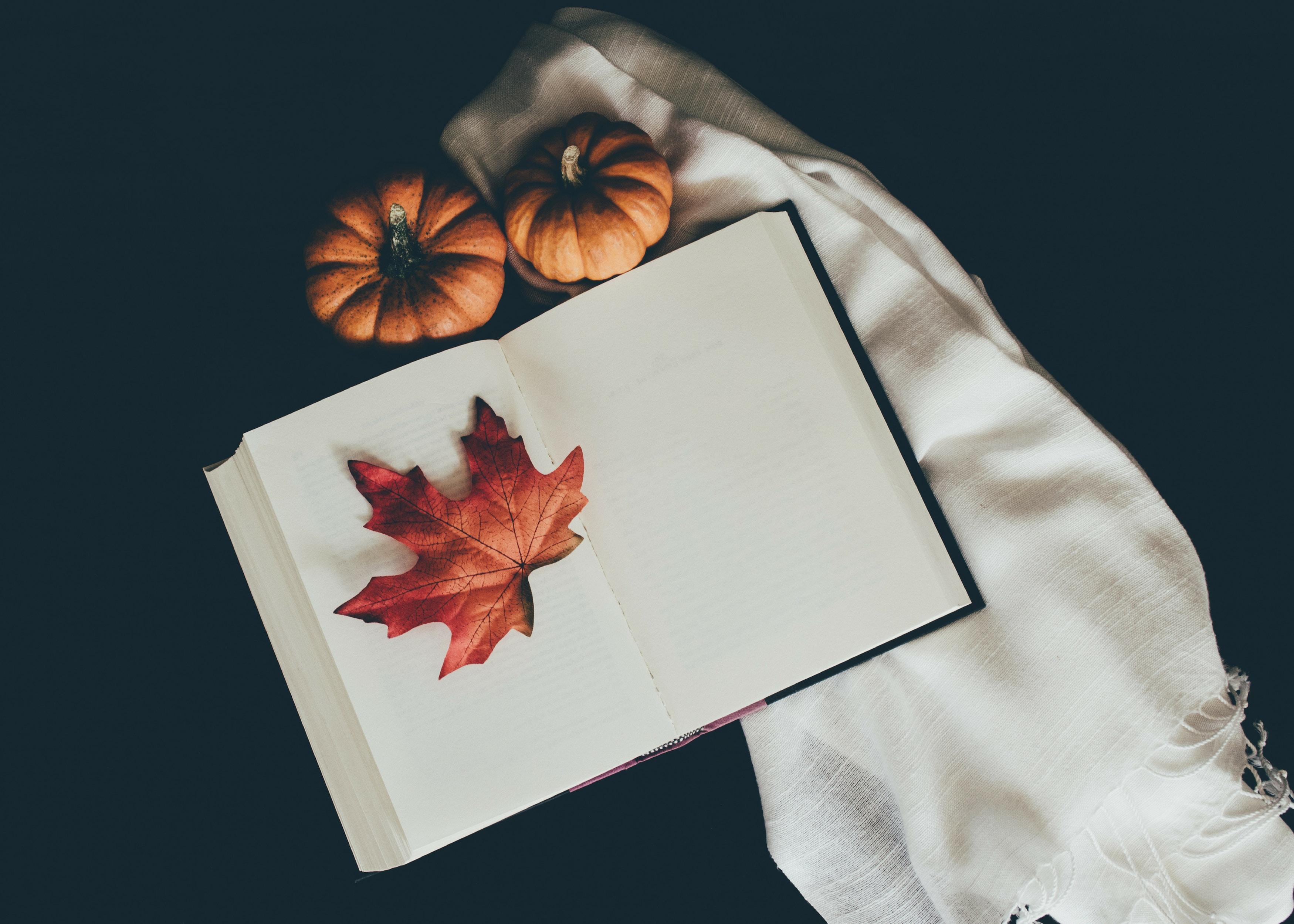 133161 Screensavers and Wallpapers Scarf for phone. Download Pumpkin, Autumn, Miscellanea, Miscellaneous, Book, Leaflet, Scarf pictures for free