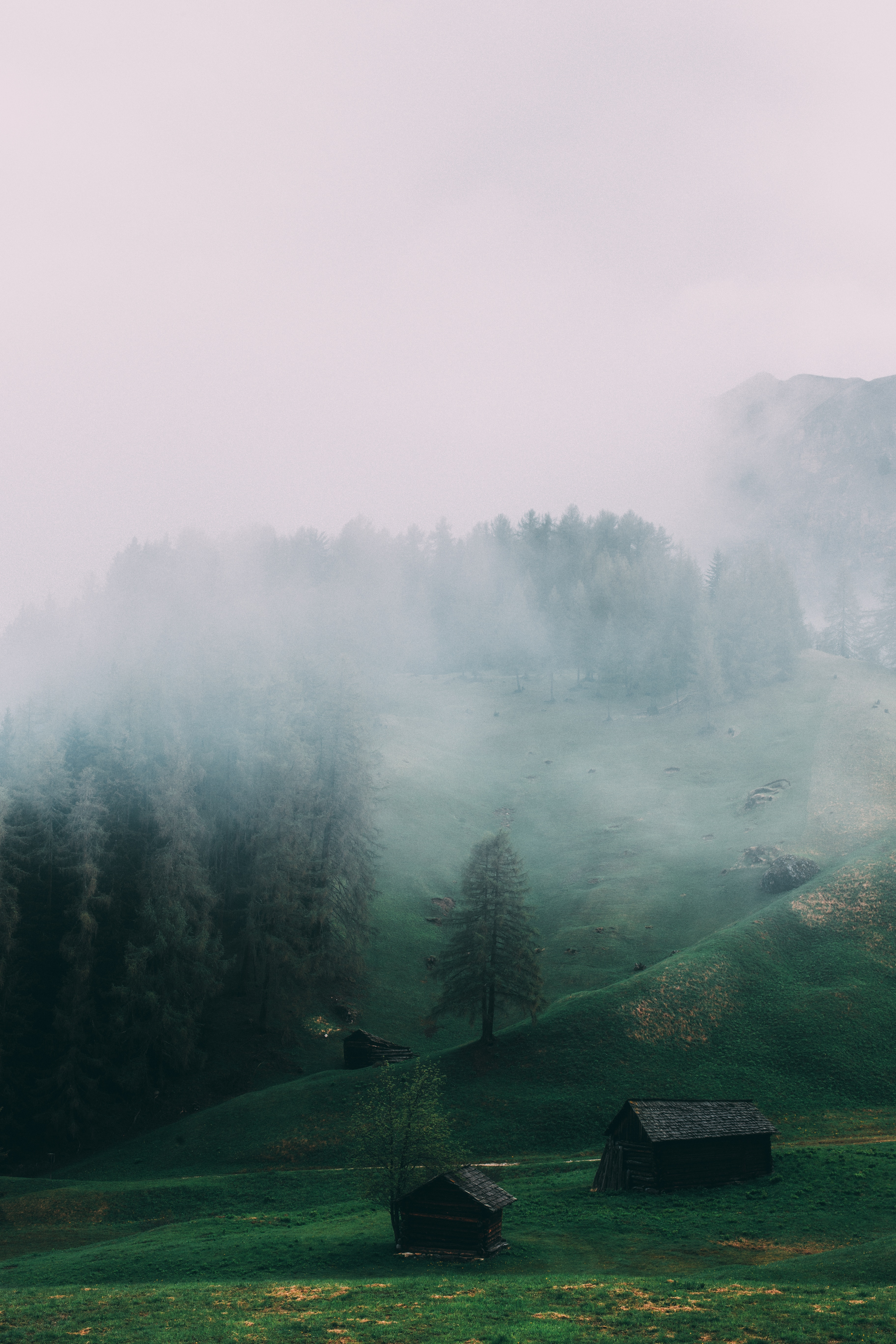 115361 Screensavers and Wallpapers Fog for phone. Download Nature, Italy, Fog, Field, Dolomites, Ladinia pictures for free
