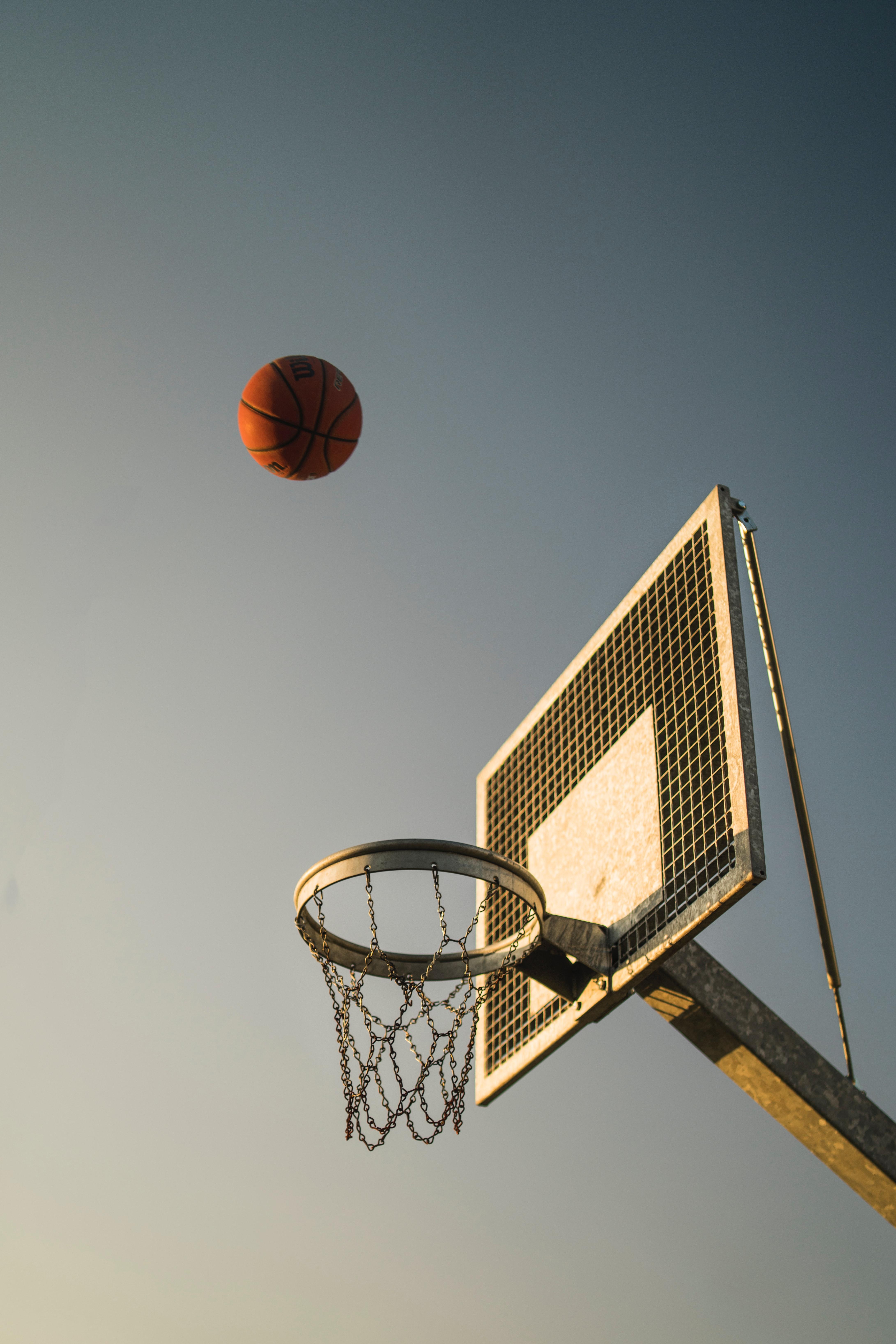 免費壁紙121393:杂项, 篮球框, 篮球戒指, 球, 盾, 盾牌 下載手機圖片