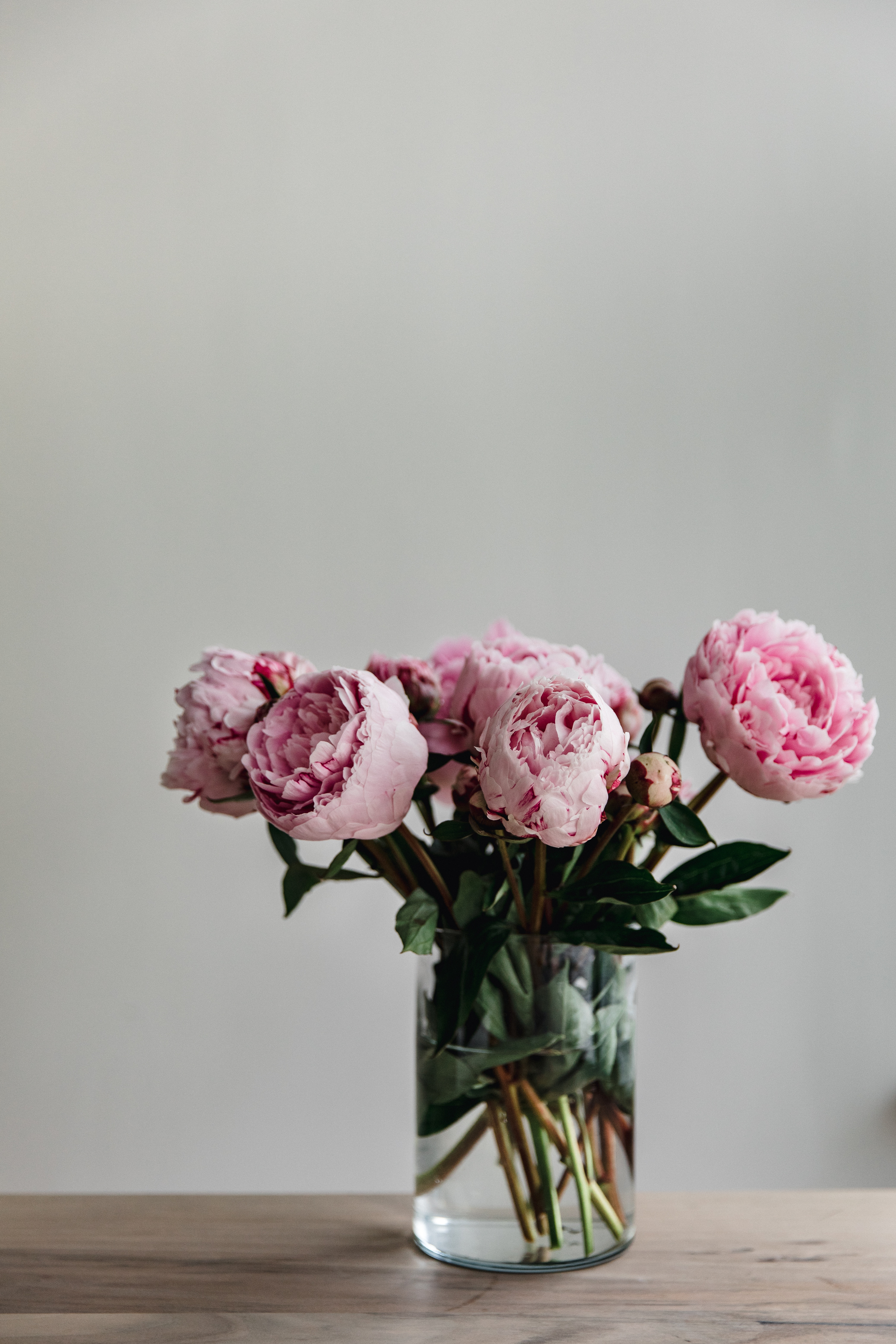 142302 Screensavers and Wallpapers Bouquet for phone. Download Flowers, Pink, Peonies, Bouquet, Vase pictures for free
