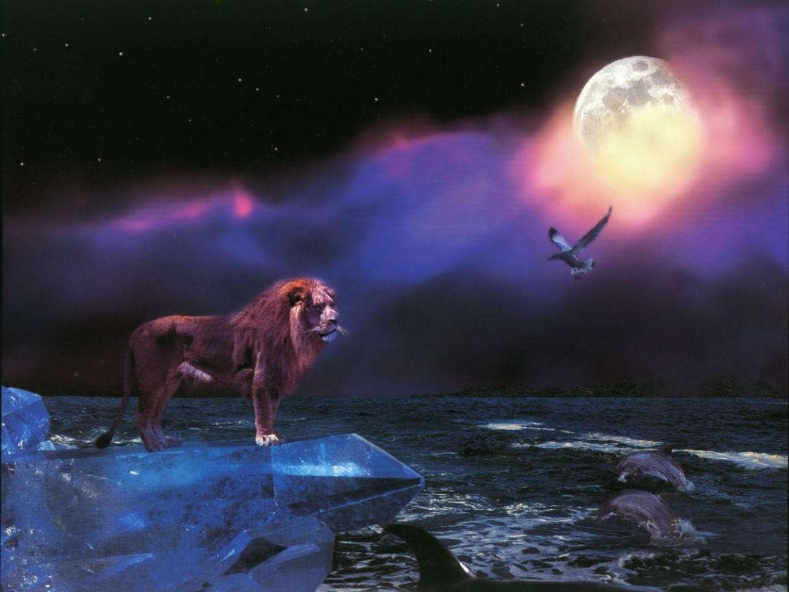 4013 免費下載壁紙 景观, 天空, 海, 夜, 月球, 图片 屏保和圖片