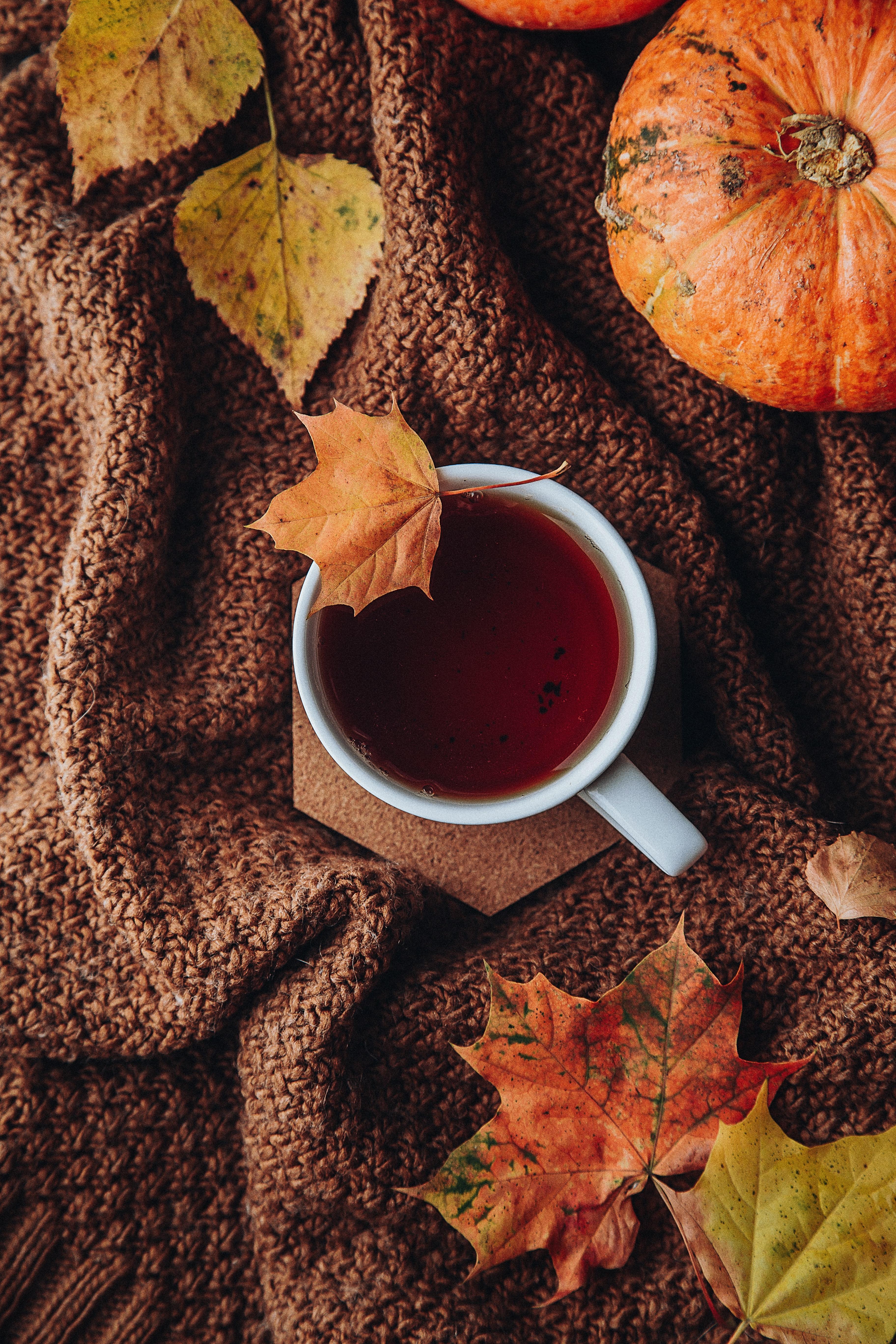 52232 Hintergrundbild herunterladen Herbst, Blätter, Verschiedenes, Sonstige, Eine Tasse, Tasse, Tee, Gemütlichkeit, Komfort - Bildschirmschoner und Bilder kostenlos