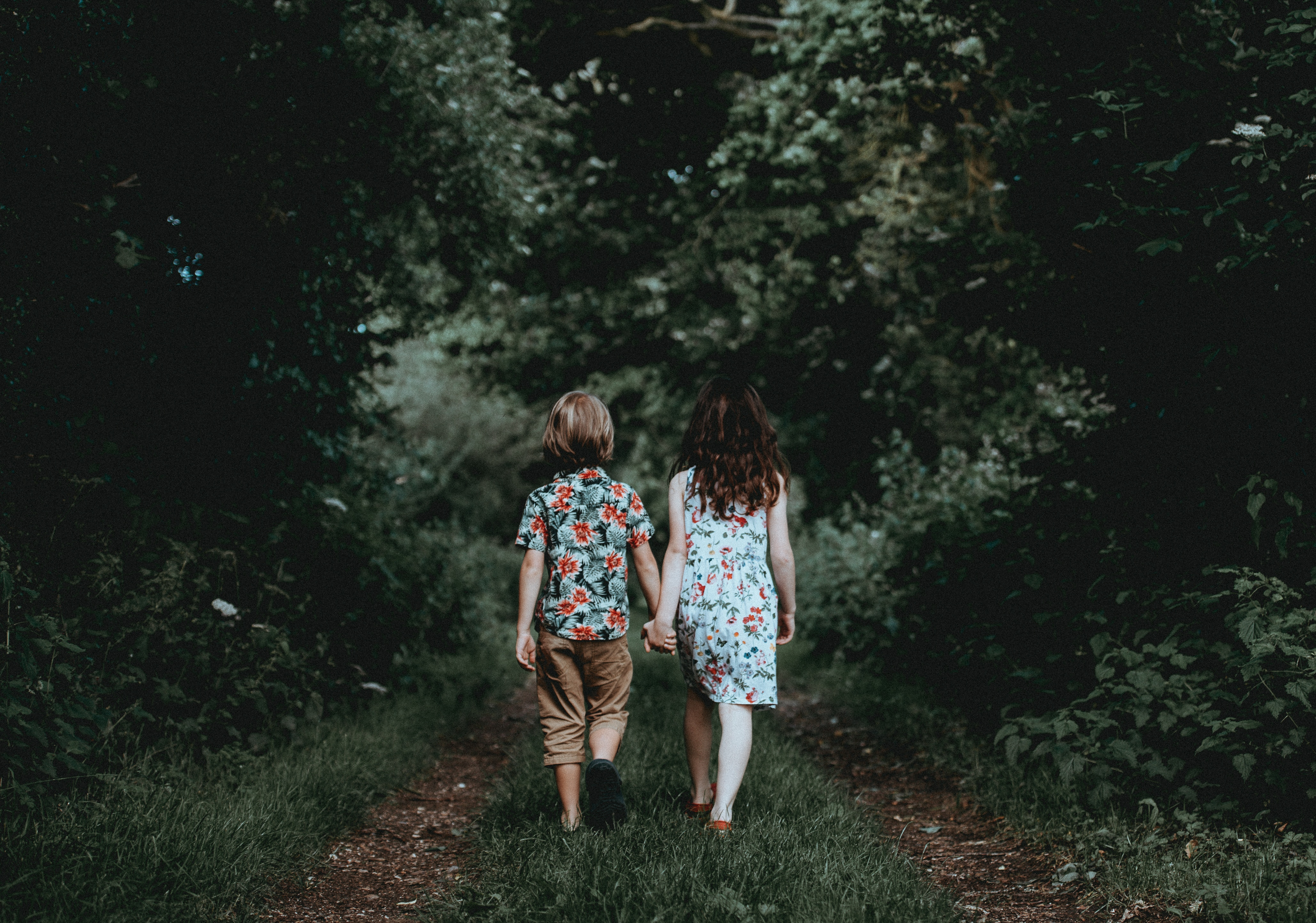 97333 Screensavers and Wallpapers Children for phone. Download Love, Children, Stroll, Friends, Forest pictures for free
