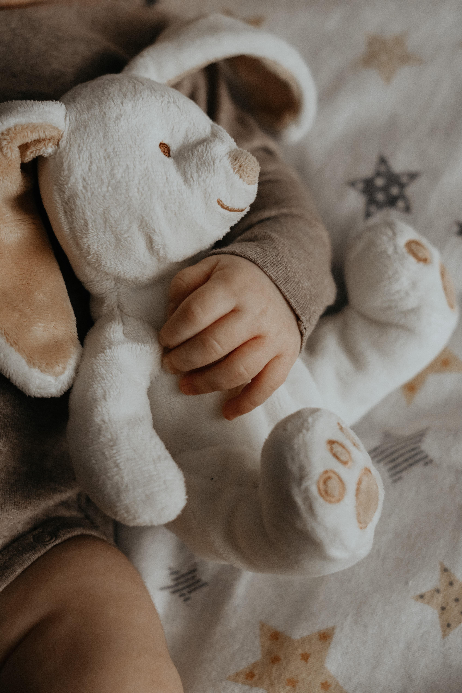 143603 скачать обои Ребенок, Игрушка, Рука, Разное, Заяц - заставки и картинки бесплатно