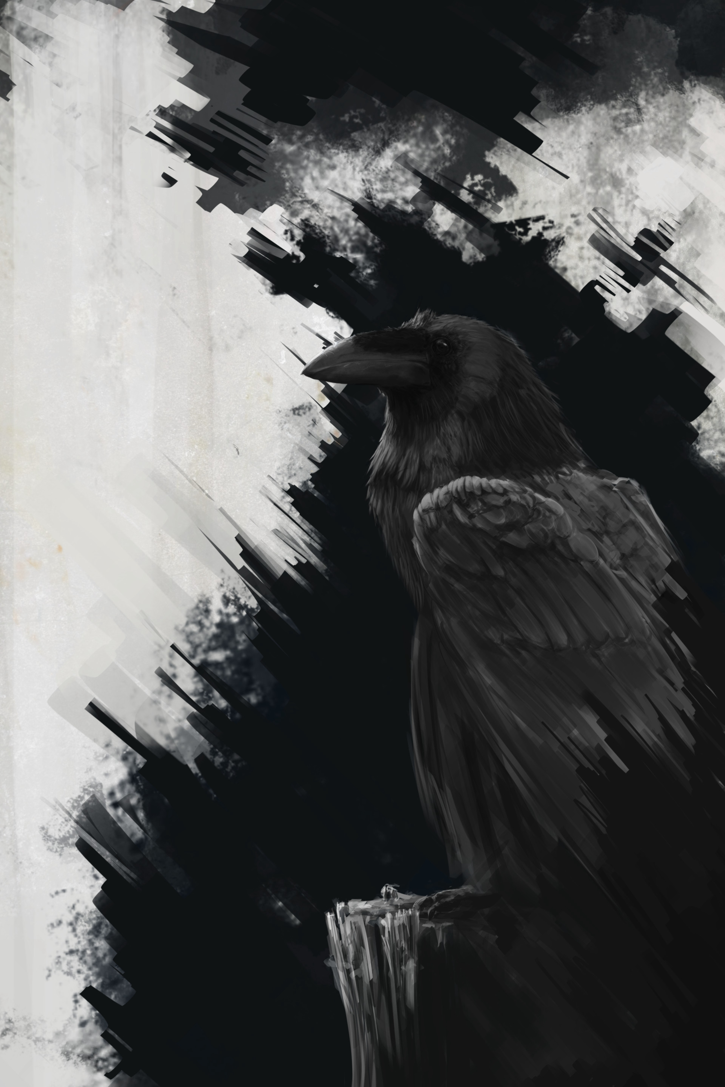 72385 download wallpaper Lines, Art, Bird, Raven screensavers and pictures for free