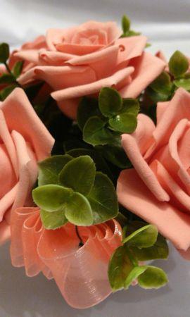 50159 descargar fondo de pantalla Plantas, Flores: protectores de pantalla e imágenes gratis