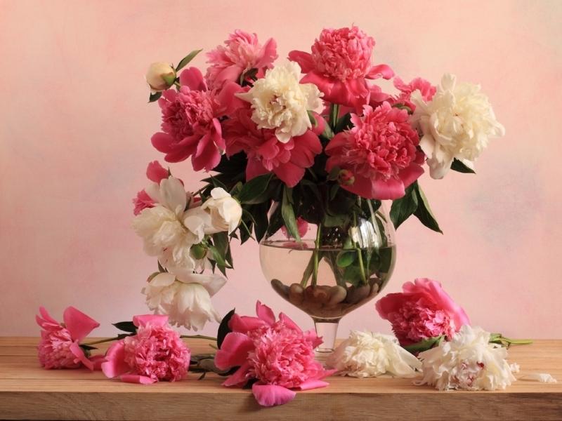 48133 скачать обои Растения, Цветы, Букеты - заставки и картинки бесплатно