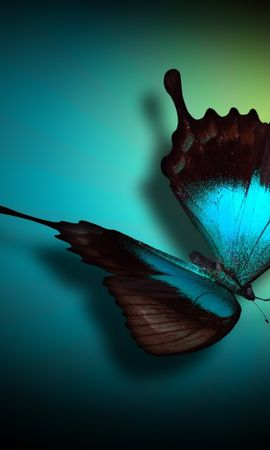 46903 Screensavers and Wallpapers Insects for phone. Download Butterflies, Insects, Pictures pictures for free