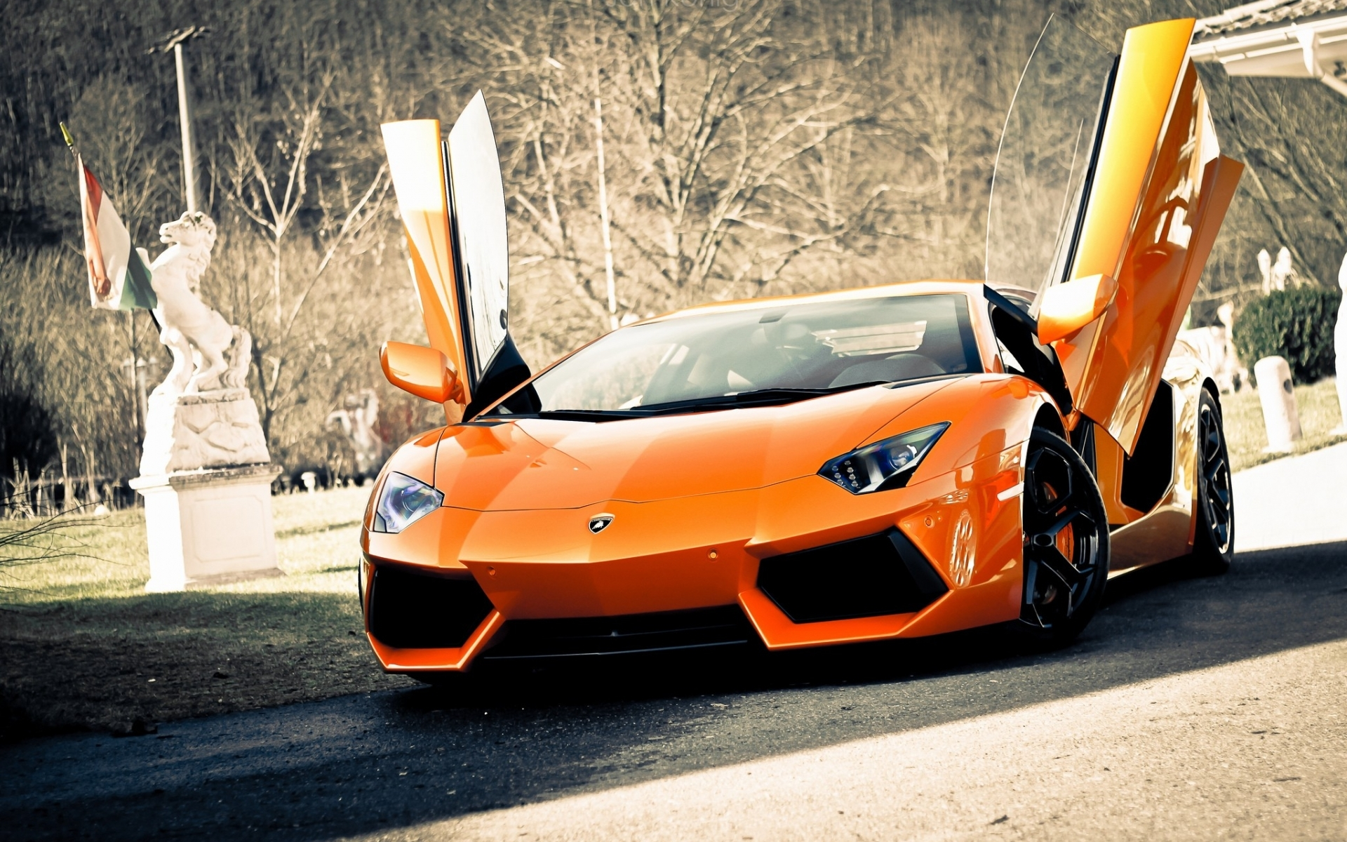 25580 download wallpaper Transport, Auto, Lamborghini screensavers and pictures for free
